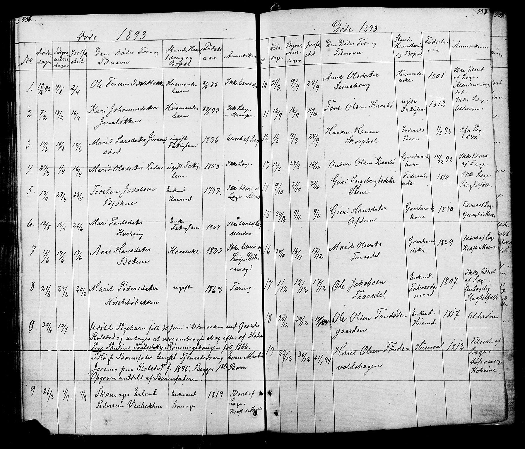 SAH, Lesja prestekontor, Klokkerbok nr. 5, 1850-1894, s. 556-557
