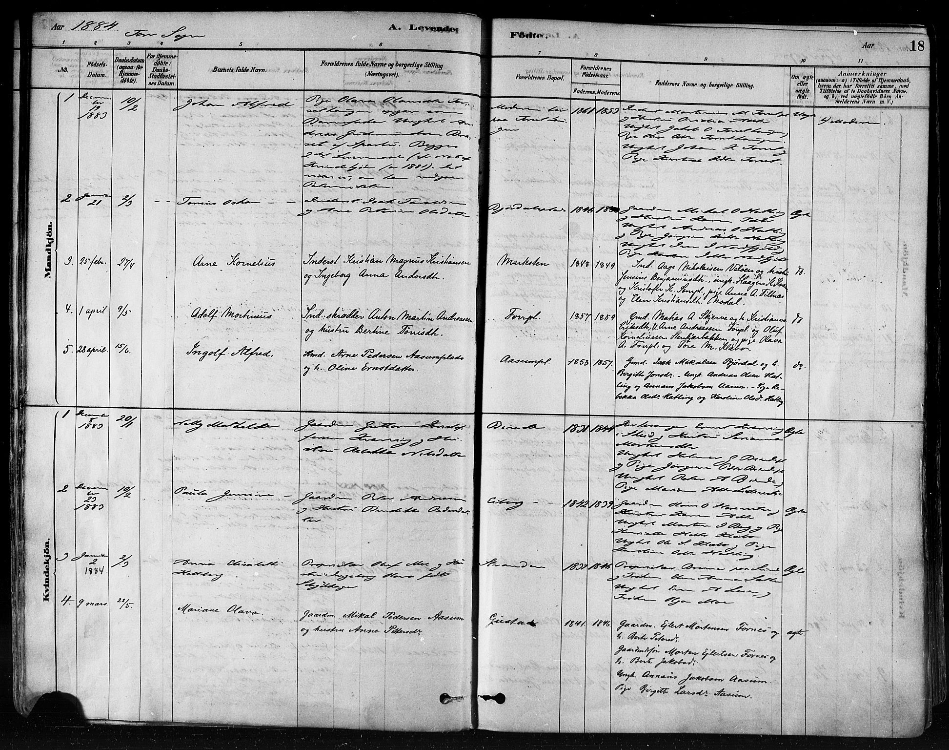 SAT, Ministerialprotokoller, klokkerbøker og fødselsregistre - Nord-Trøndelag, 746/L0448: Ministerialbok nr. 746A07 /1, 1878-1900, s. 18