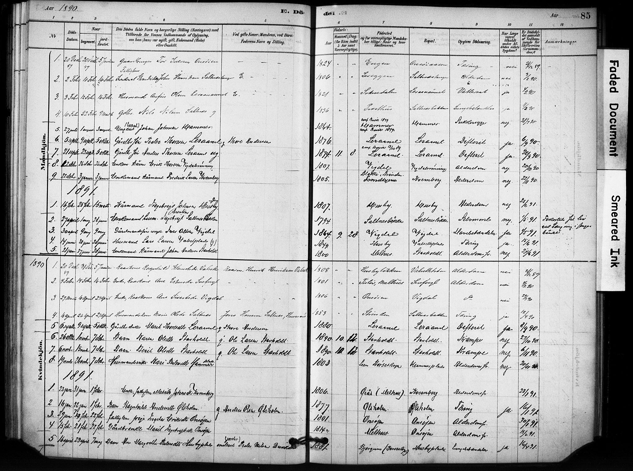 SAT, Ministerialprotokoller, klokkerbøker og fødselsregistre - Sør-Trøndelag, 666/L0786: Ministerialbok nr. 666A04, 1878-1895, s. 85