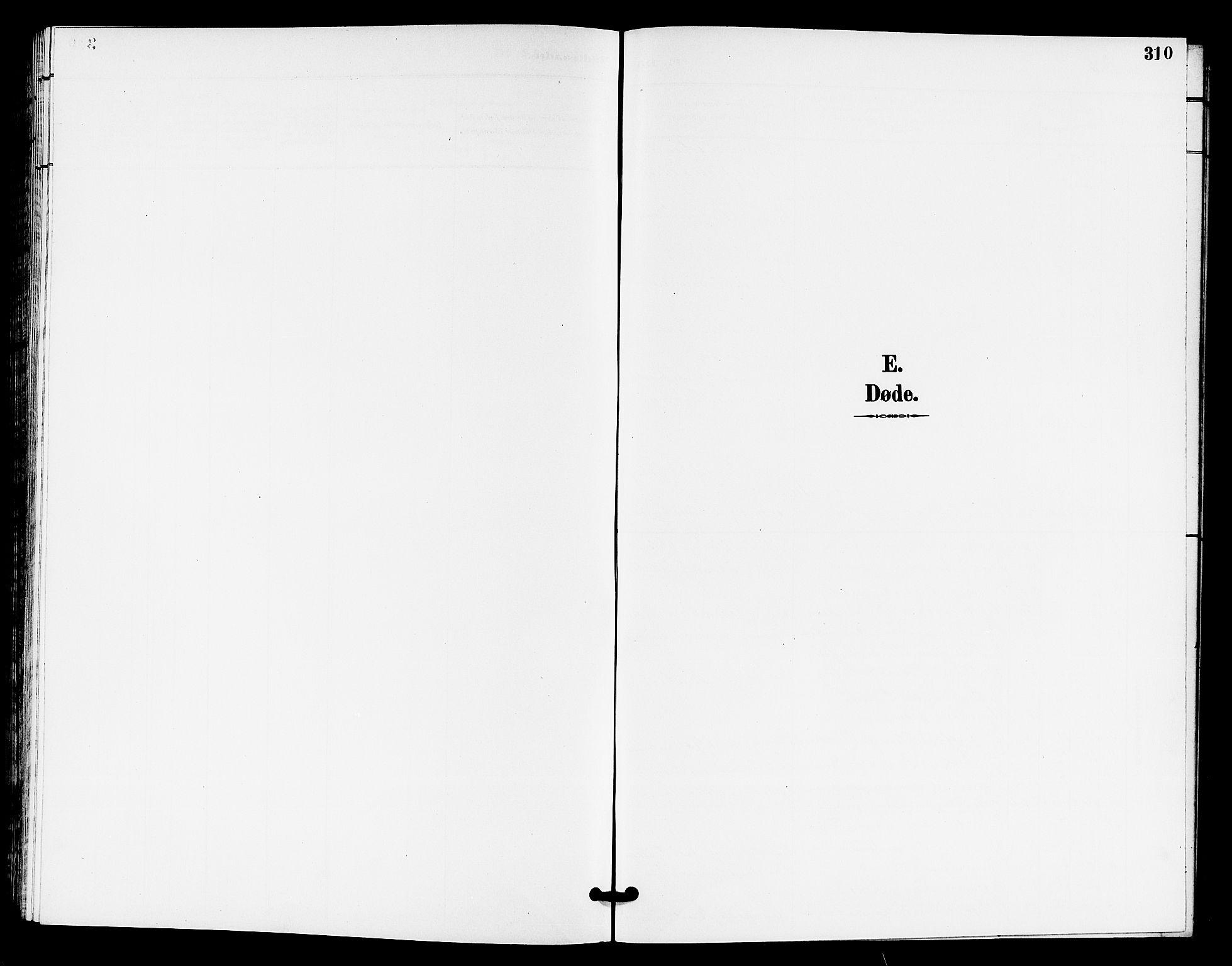 SAKO, Horten kirkebøker, G/Ga/L0006: Klokkerbok nr. 6, 1896-1904, s. 310