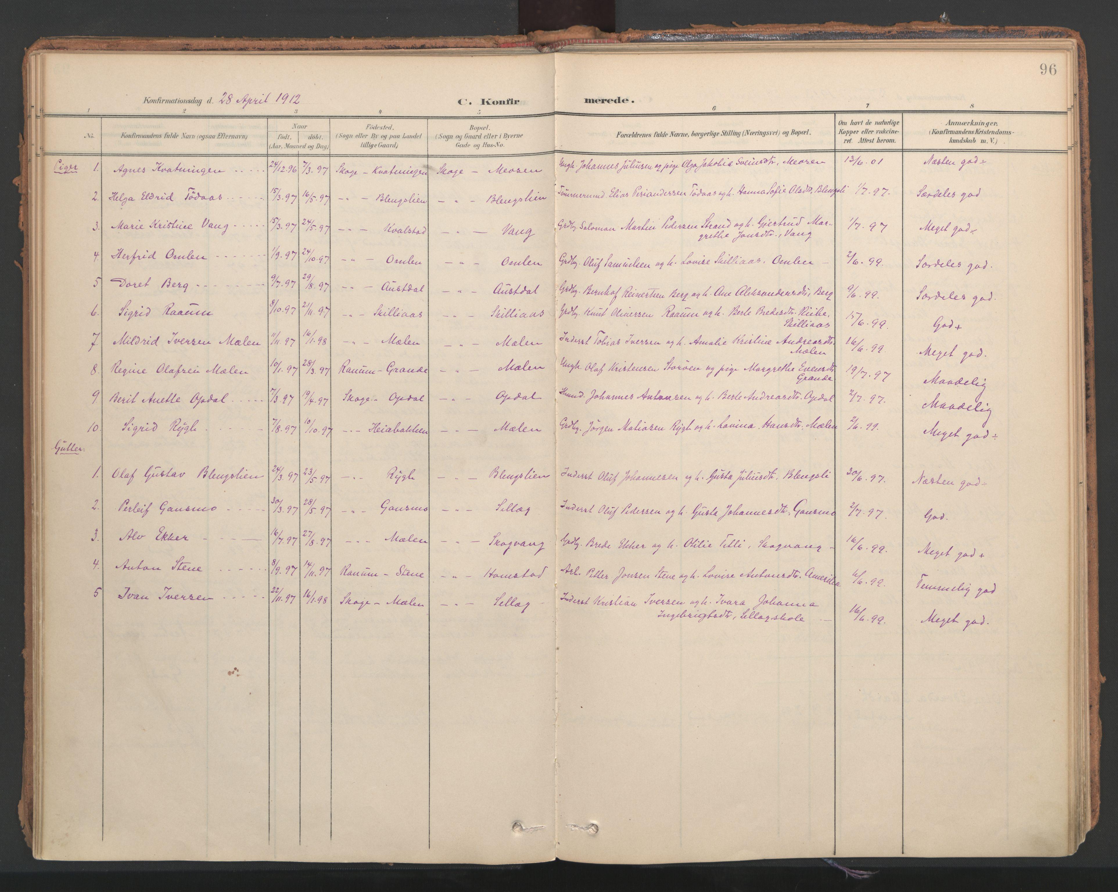 SAT, Ministerialprotokoller, klokkerbøker og fødselsregistre - Nord-Trøndelag, 766/L0564: Ministerialbok nr. 767A02, 1900-1932, s. 96