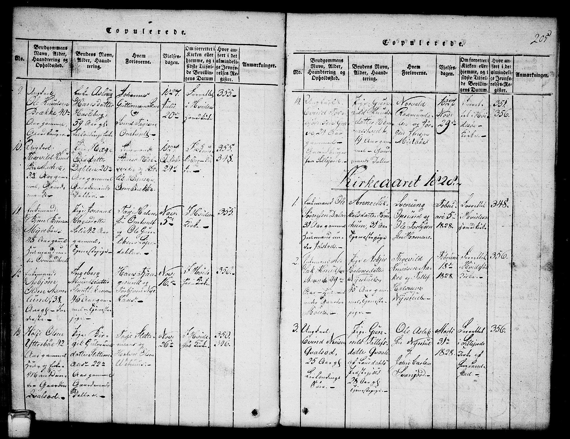 SAKO, Kviteseid kirkebøker, G/Gb/L0001: Klokkerbok nr. II 1, 1815-1842, s. 205