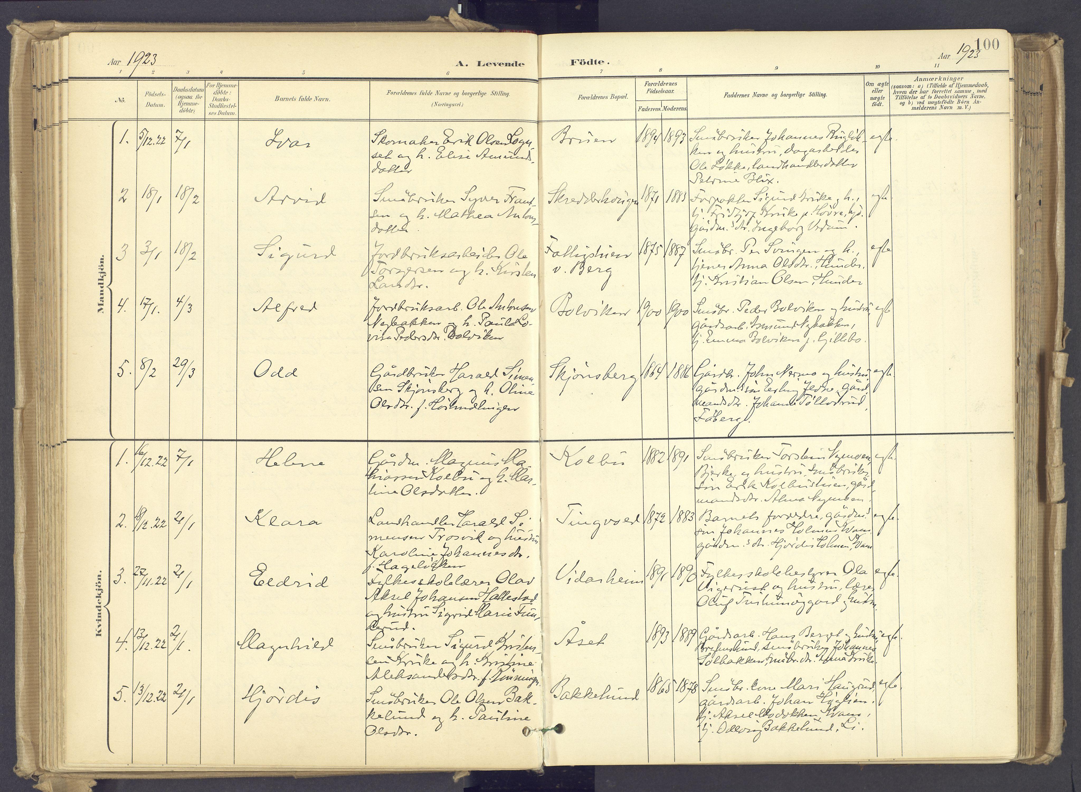 SAH, Øyer prestekontor, Ministerialbok nr. 12, 1897-1920, s. 100