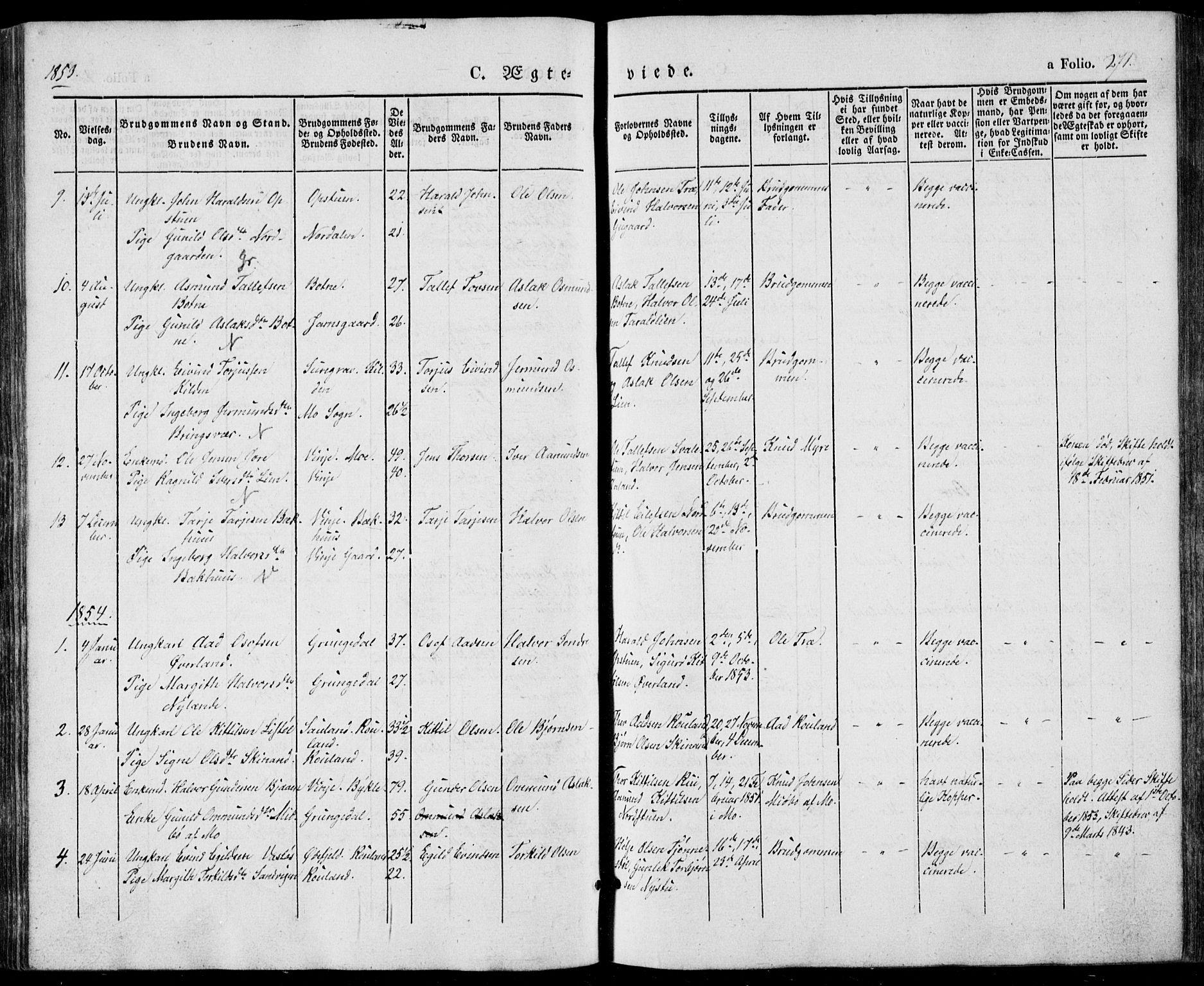 SAKO, Vinje kirkebøker, F/Fa/L0004: Ministerialbok nr. I 4, 1843-1869, s. 271