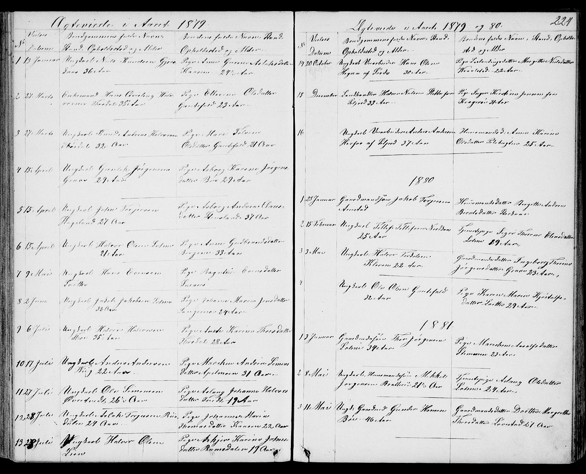 SAKO, Drangedal kirkebøker, G/Gb/L0001: Klokkerbok nr. II 1, 1856-1894, s. 224