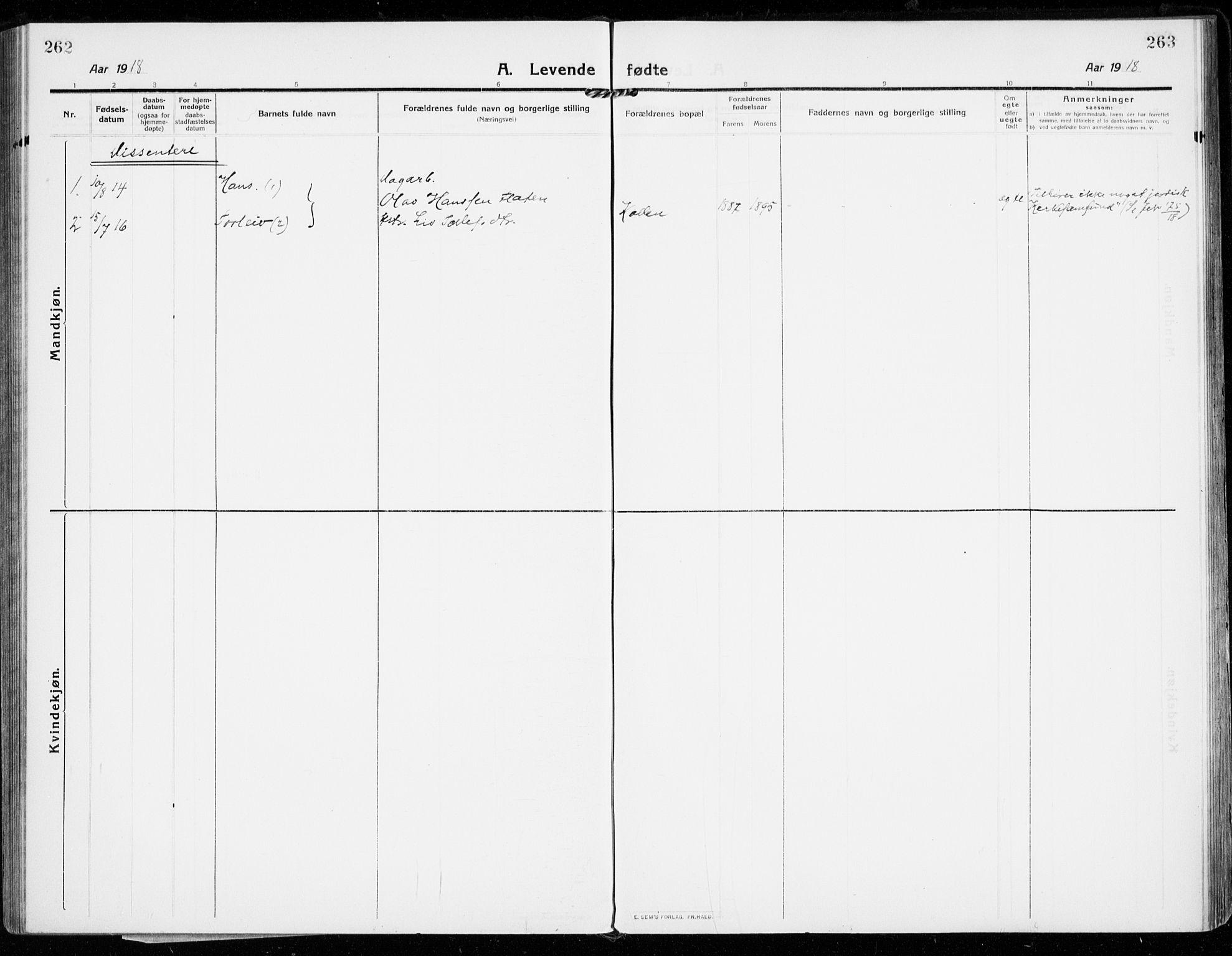 SAKO, Strømsgodset kirkebøker, F/Fa/L0002: Ministerialbok nr. 2, 1910-1920, s. 262-263