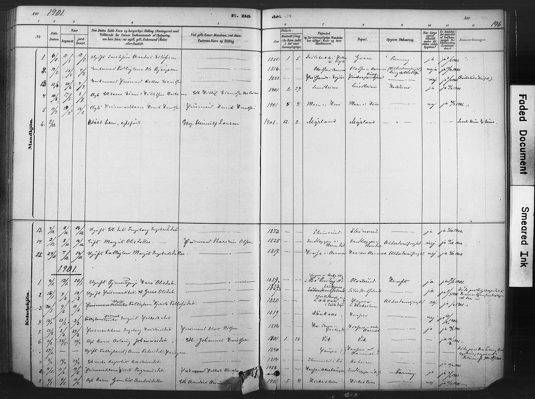 SAKO, Sauherad kirkebøker, F/Fb/L0002: Ministerialbok nr. II 2, 1878-1901, s. 196
