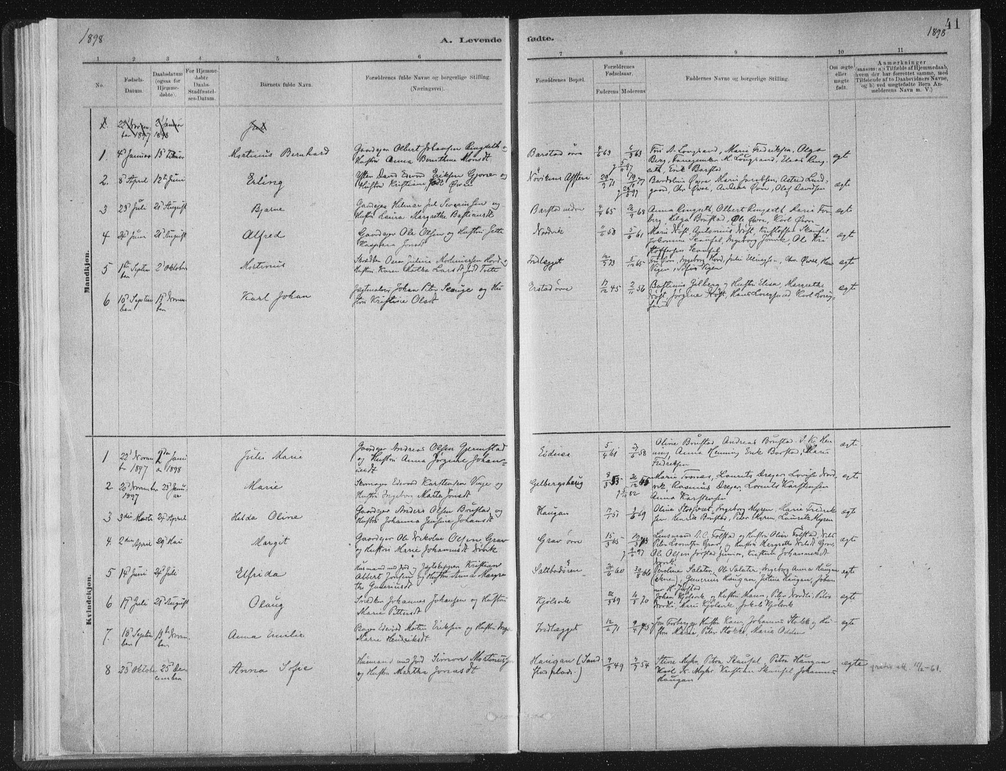 SAT, Ministerialprotokoller, klokkerbøker og fødselsregistre - Nord-Trøndelag, 722/L0220: Ministerialbok nr. 722A07, 1881-1908, s. 41
