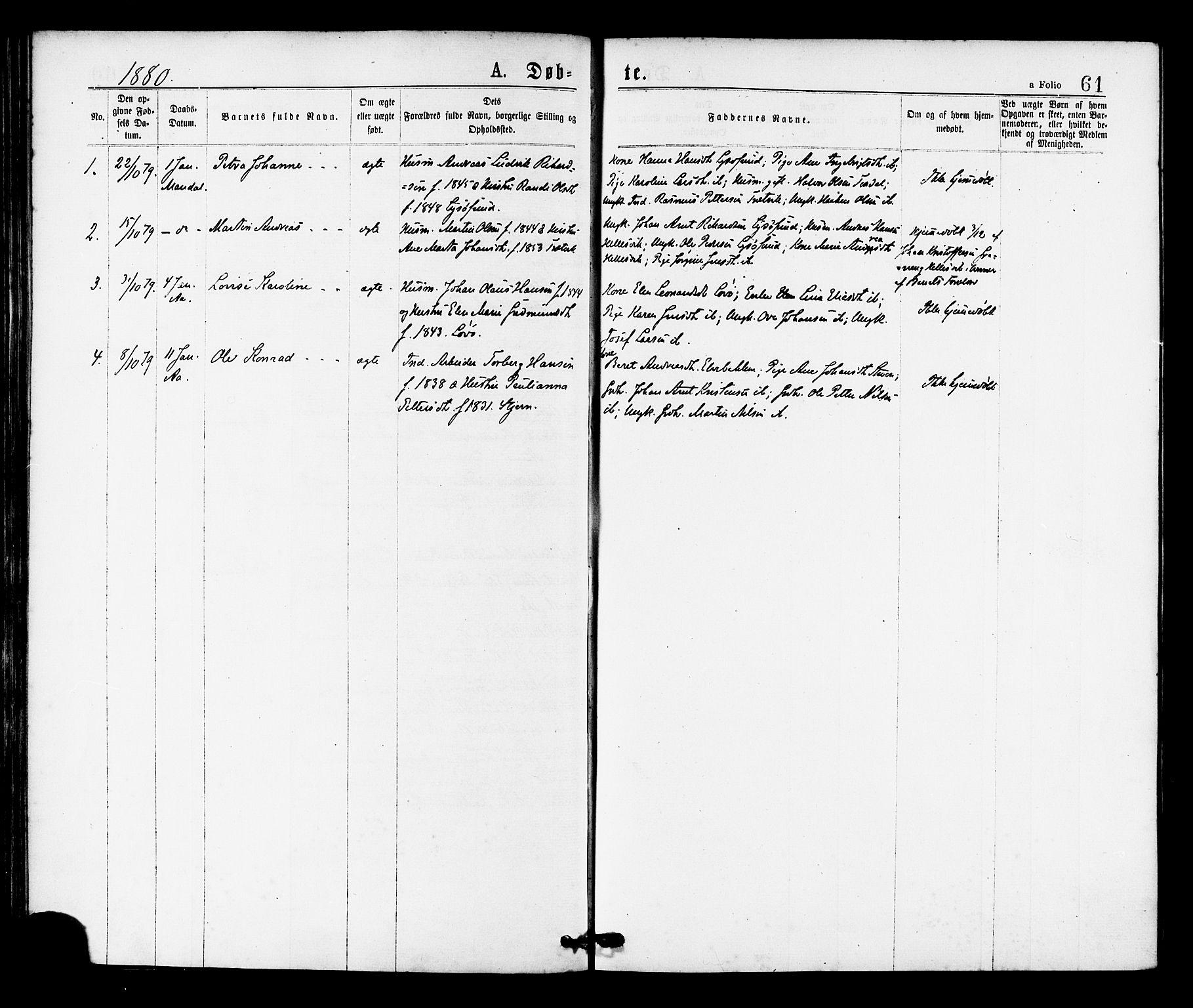 SAT, Ministerialprotokoller, klokkerbøker og fødselsregistre - Sør-Trøndelag, 655/L0679: Ministerialbok nr. 655A08, 1873-1879, s. 61