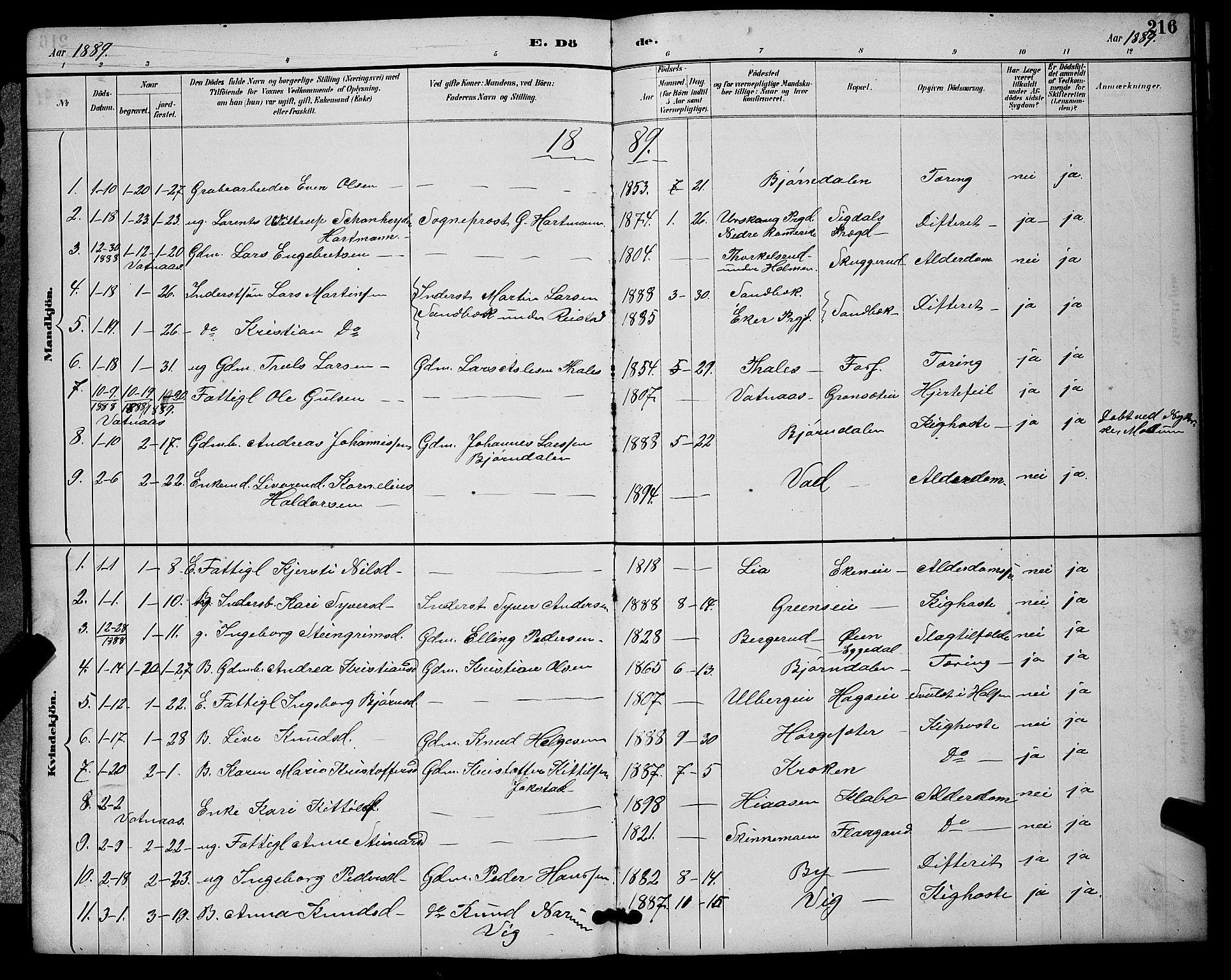 SAKO, Sigdal kirkebøker, G/Ga/L0005: Klokkerbok nr. I 5, 1886-1900, s. 216
