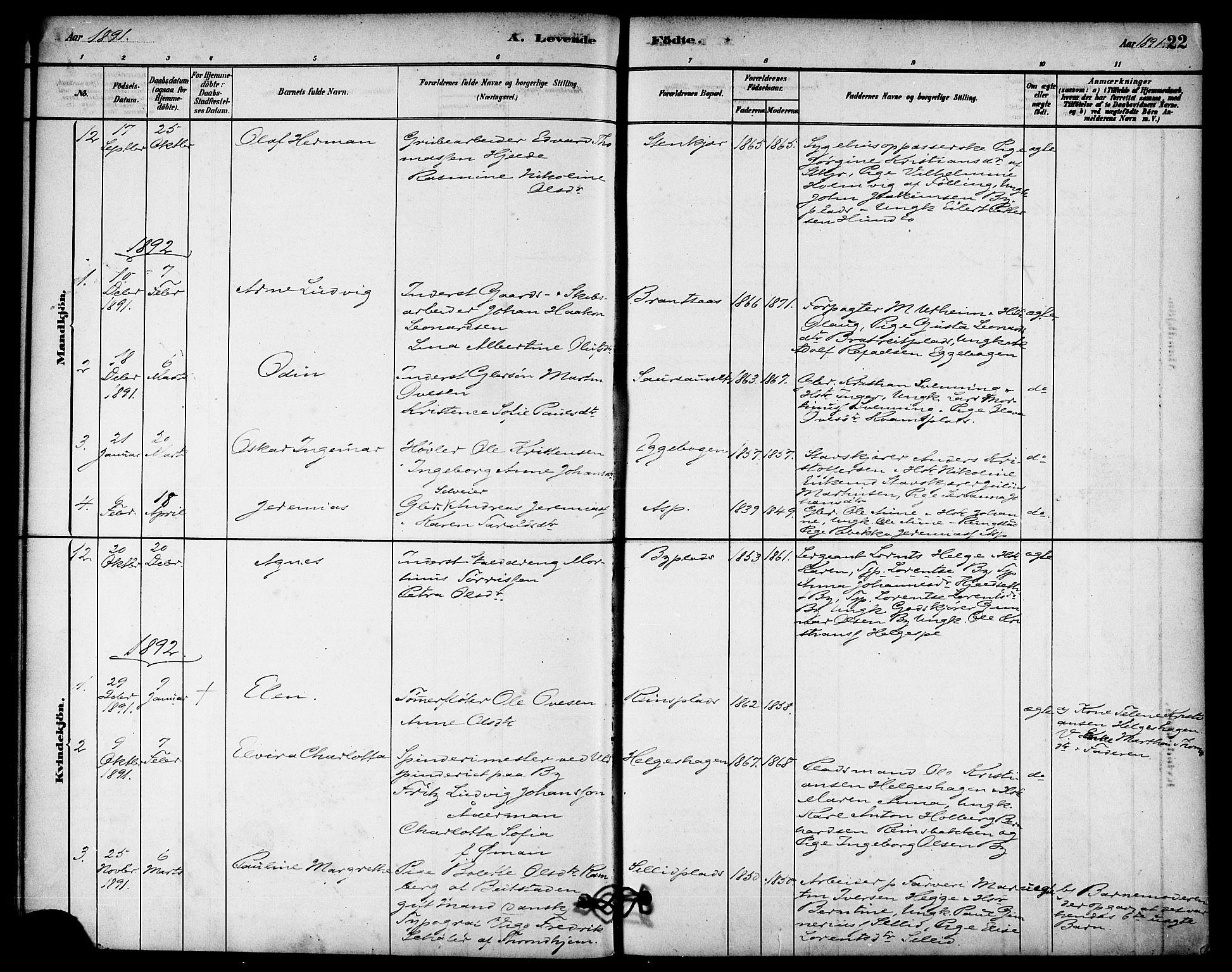 SAT, Ministerialprotokoller, klokkerbøker og fødselsregistre - Nord-Trøndelag, 740/L0378: Ministerialbok nr. 740A01, 1881-1895, s. 22