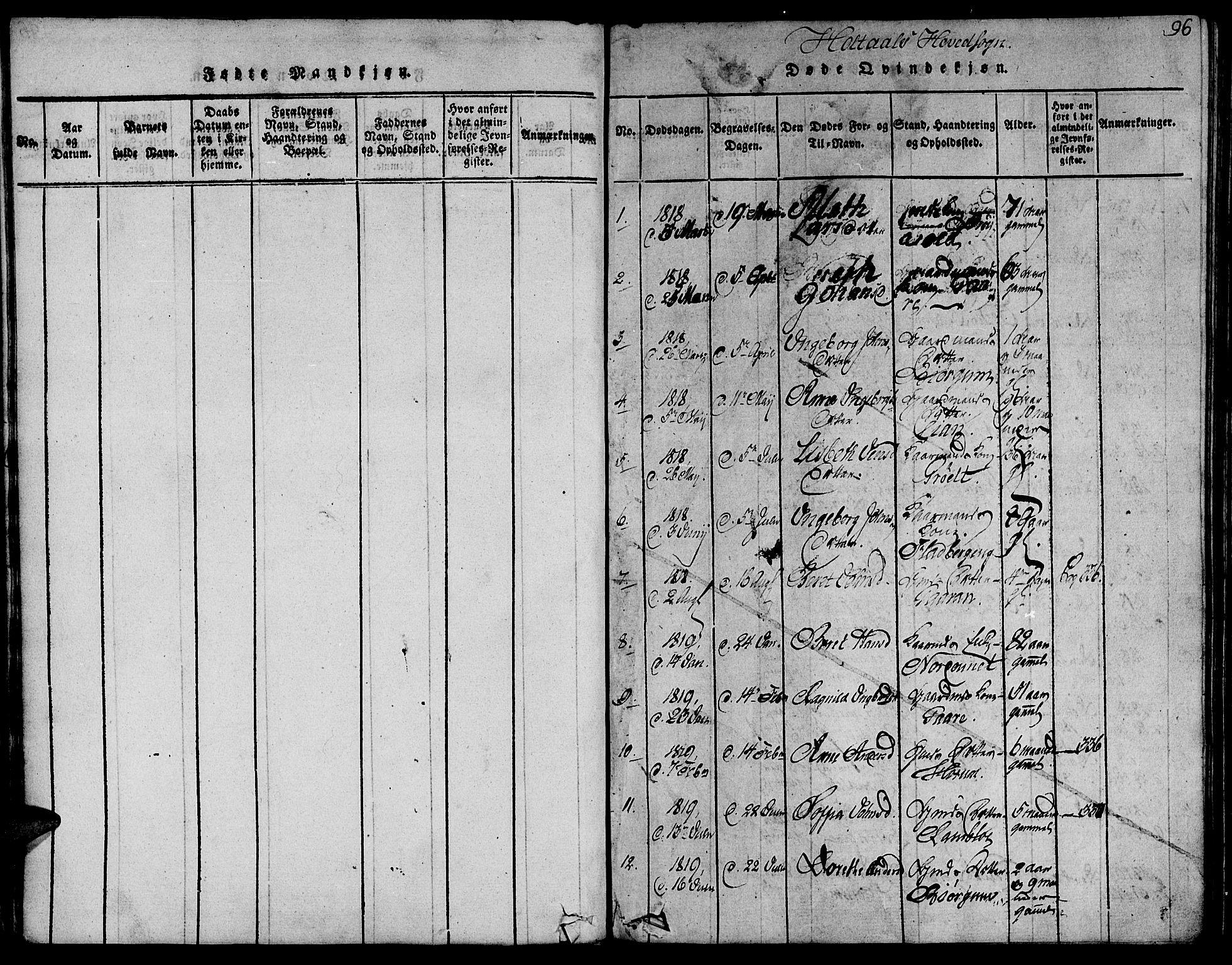 SAT, Ministerialprotokoller, klokkerbøker og fødselsregistre - Sør-Trøndelag, 685/L0954: Ministerialbok nr. 685A03 /1, 1817-1829, s. 96