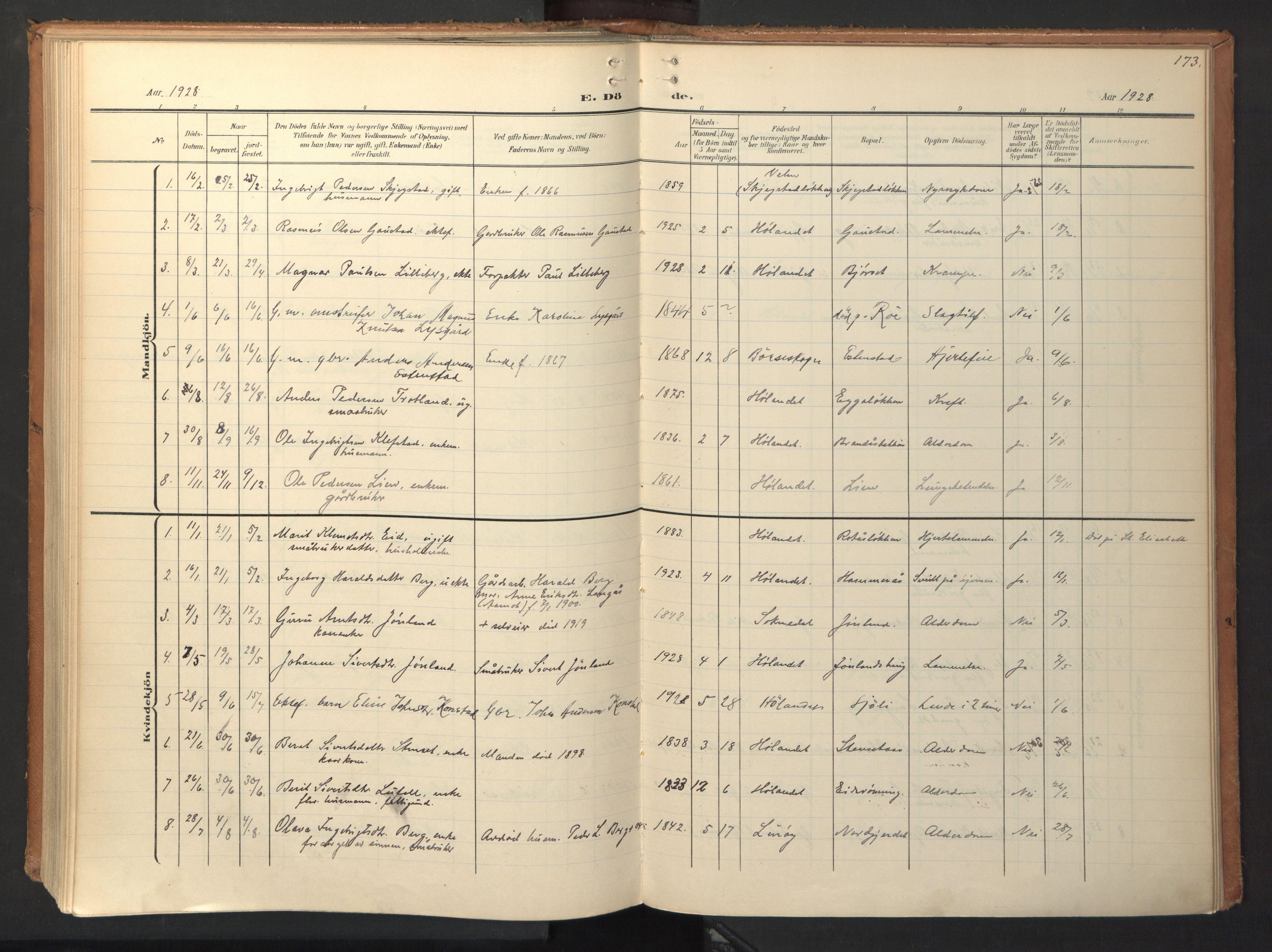 SAT, Ministerialprotokoller, klokkerbøker og fødselsregistre - Sør-Trøndelag, 694/L1128: Ministerialbok nr. 694A02, 1906-1931, s. 173