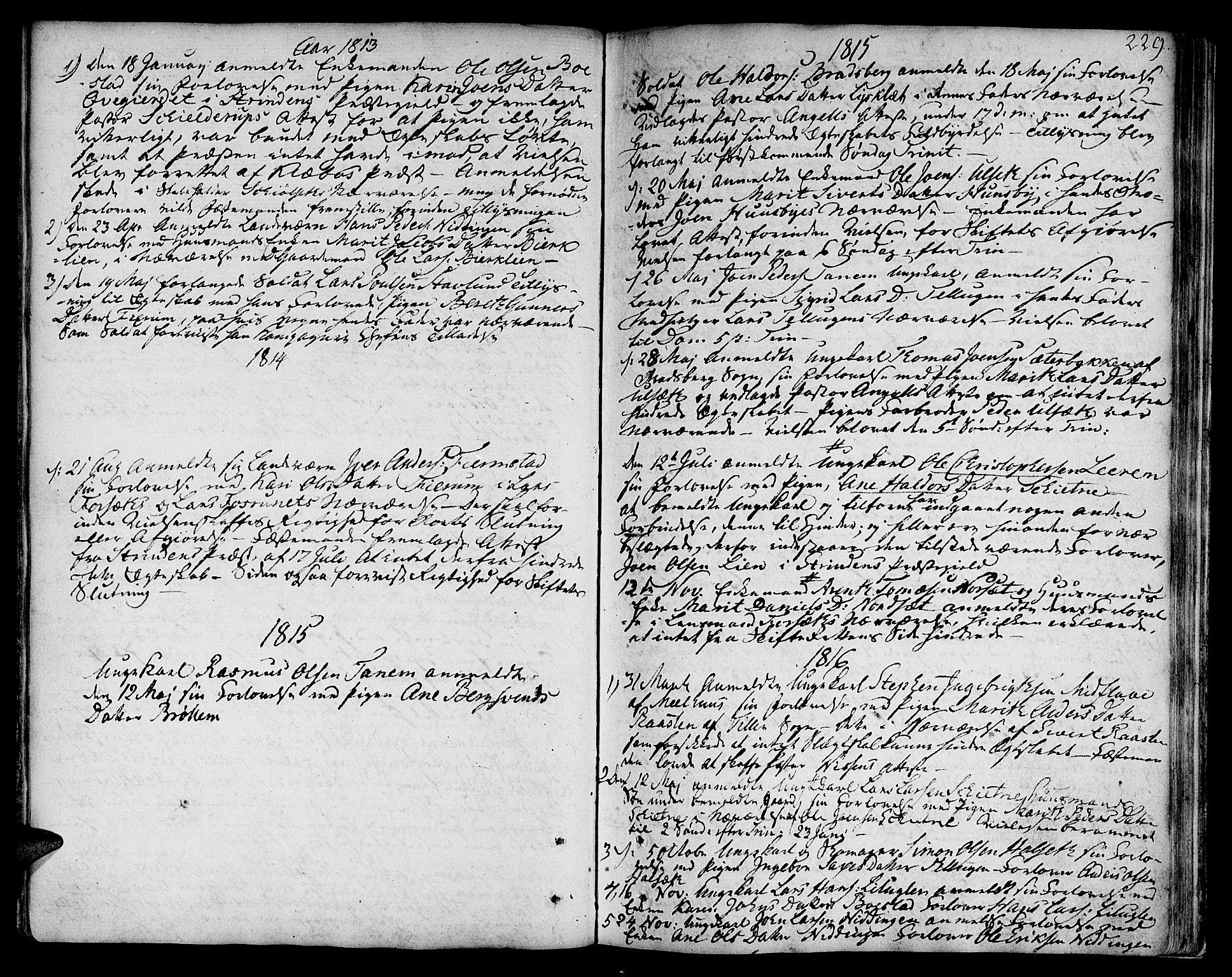 SAT, Ministerialprotokoller, klokkerbøker og fødselsregistre - Sør-Trøndelag, 618/L0438: Ministerialbok nr. 618A03, 1783-1815, s. 229