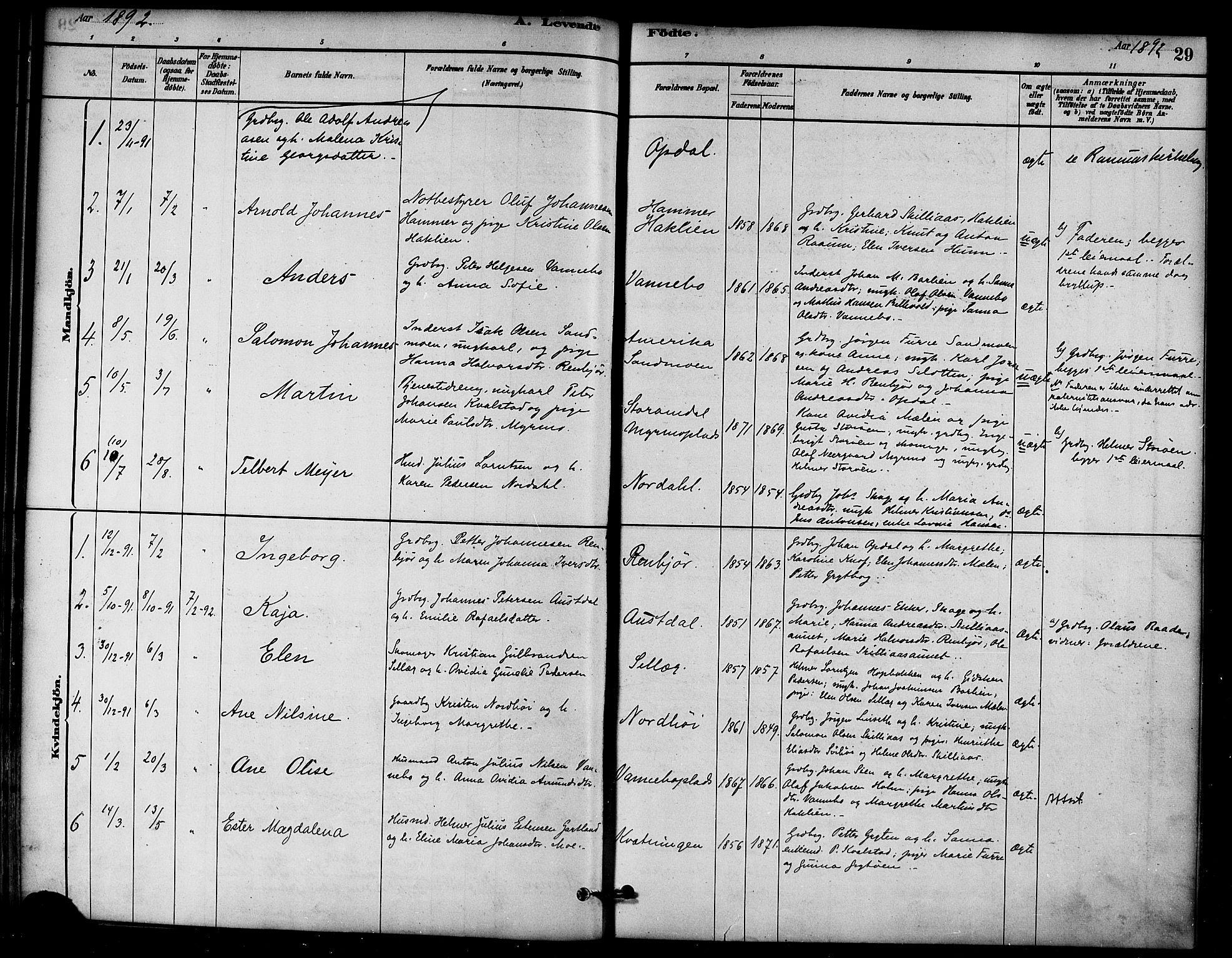 SAT, Ministerialprotokoller, klokkerbøker og fødselsregistre - Nord-Trøndelag, 766/L0563: Ministerialbok nr. 767A01, 1881-1899, s. 29
