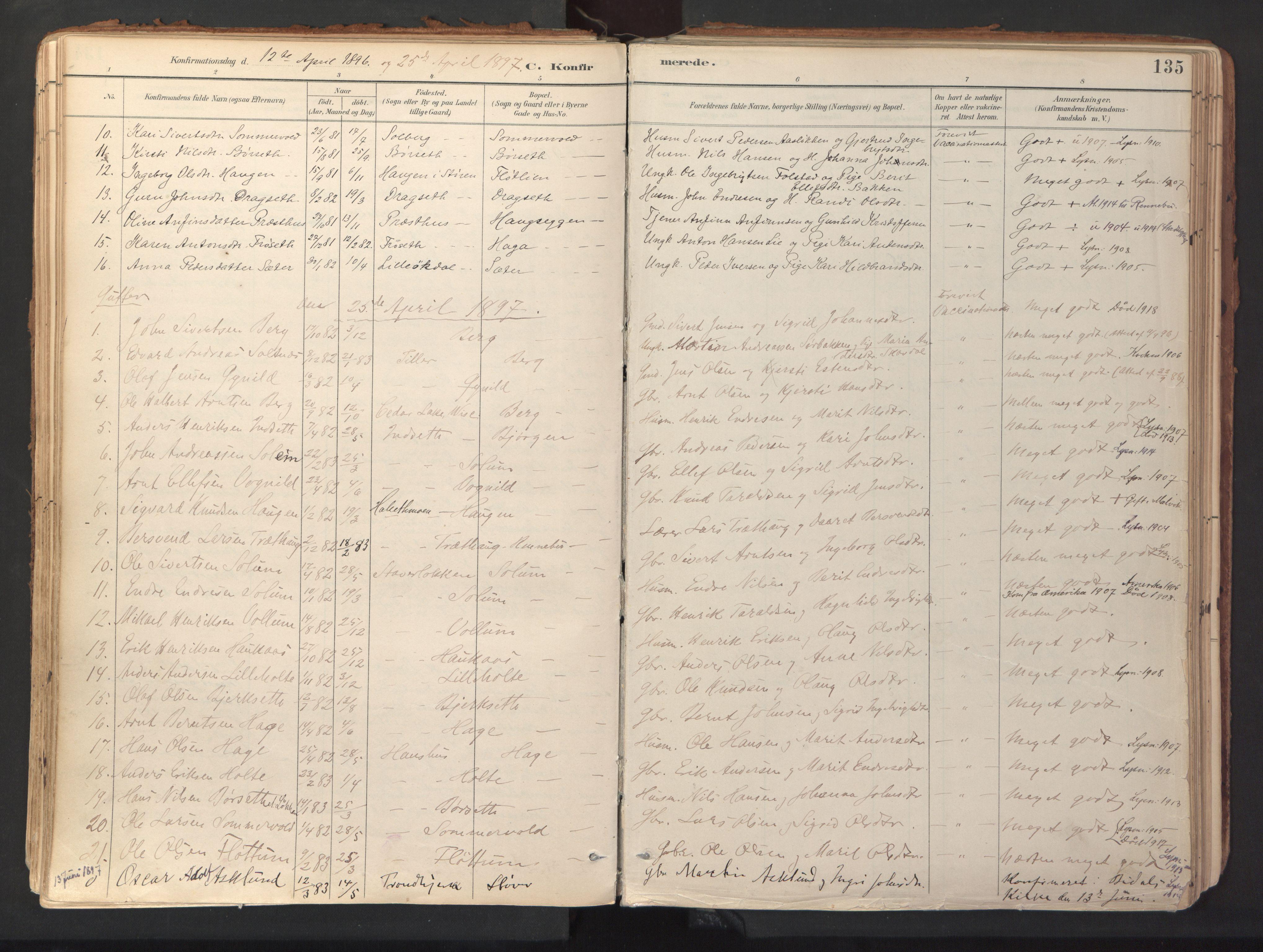 SAT, Ministerialprotokoller, klokkerbøker og fødselsregistre - Sør-Trøndelag, 689/L1041: Ministerialbok nr. 689A06, 1891-1923, s. 135