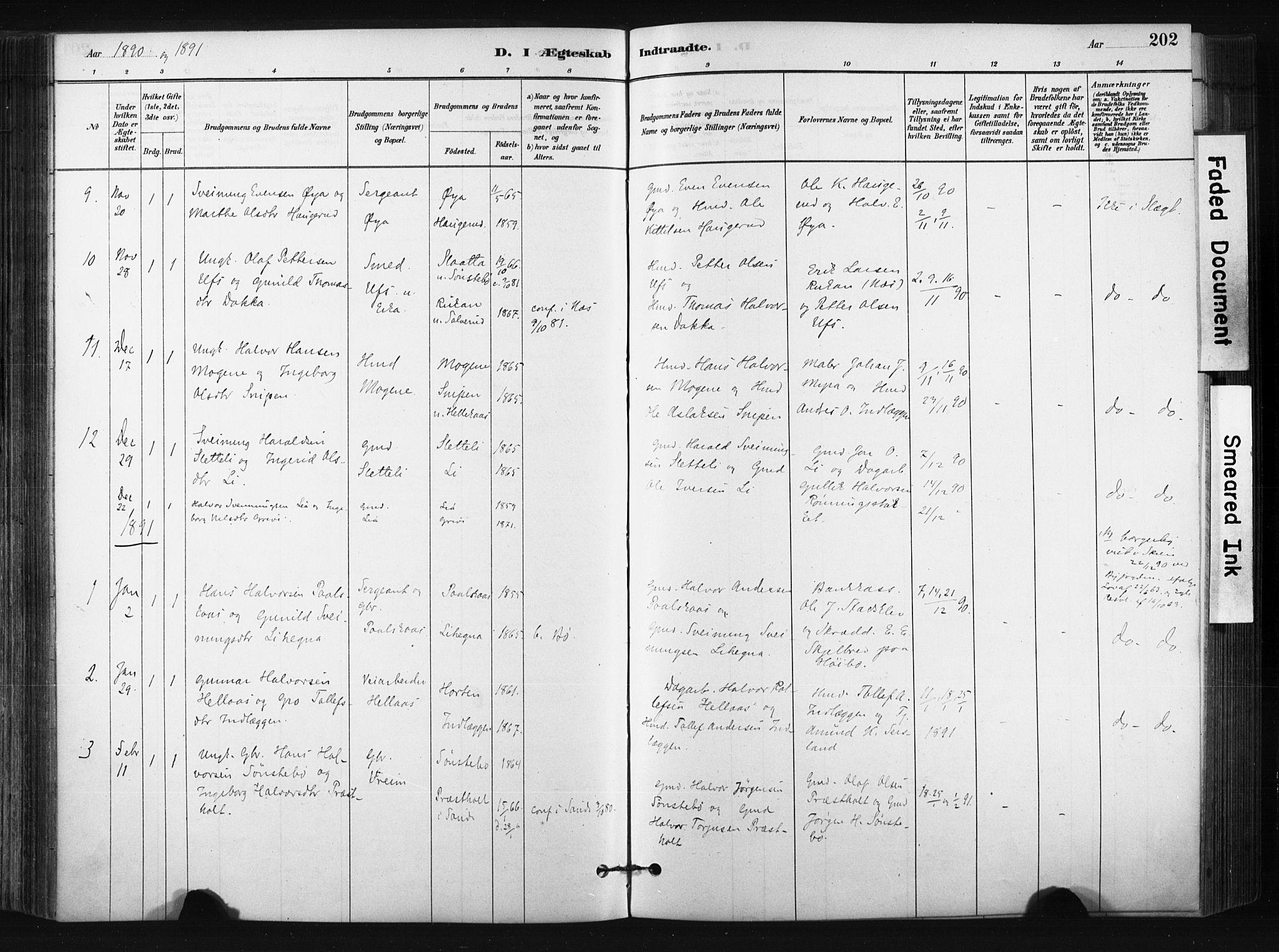 SAKO, Bø kirkebøker, F/Fa/L0010: Ministerialbok nr. 10, 1880-1892, s. 202