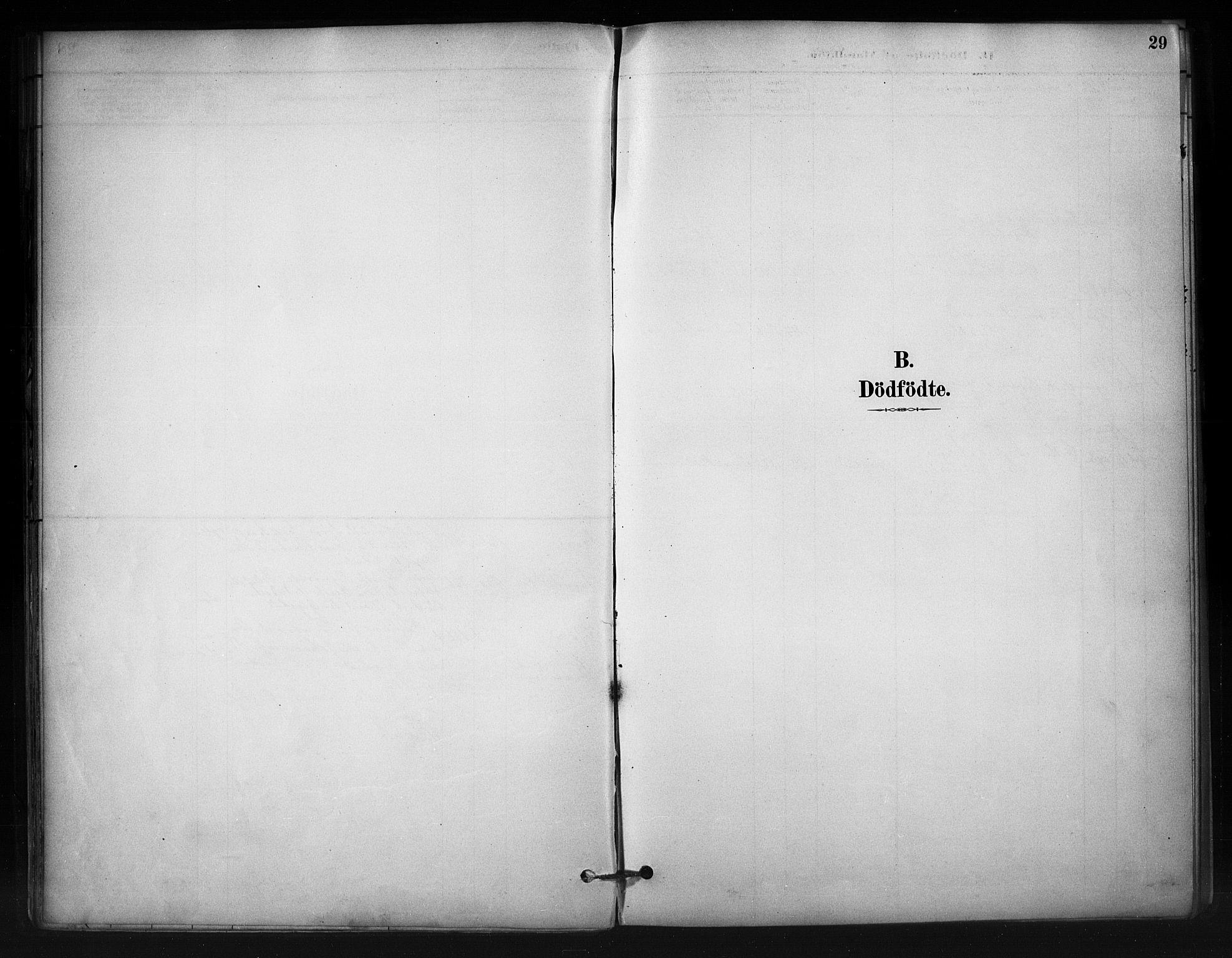 SAH, Nord-Aurdal prestekontor, Ministerialbok nr. 12, 1883-1895, s. 29