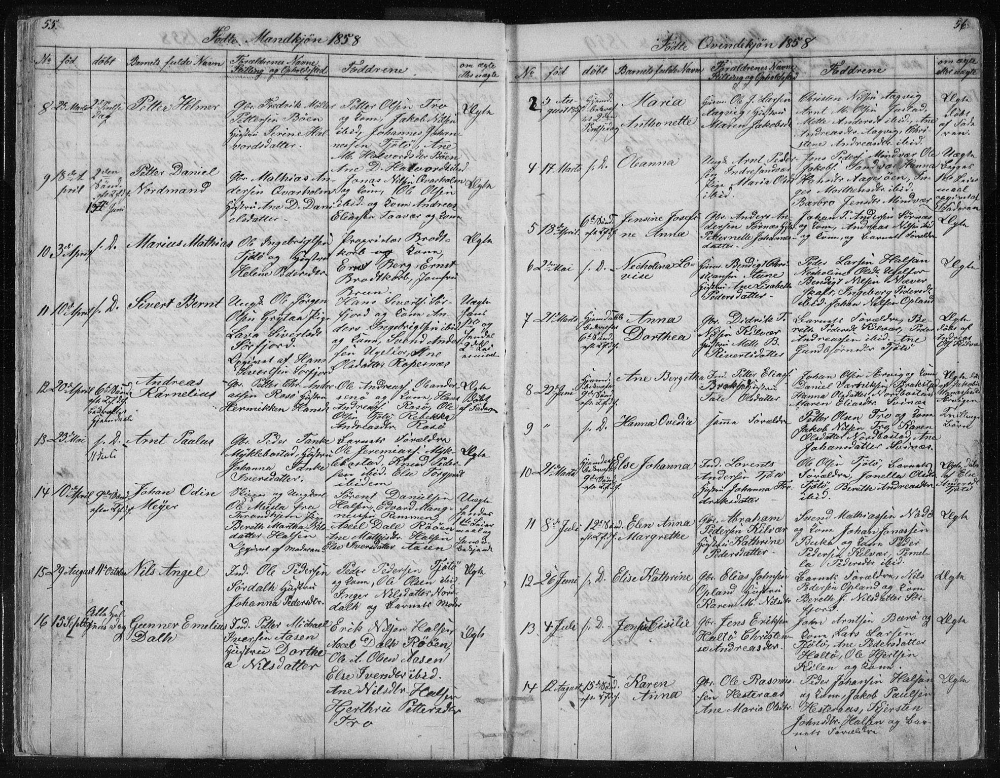 SAT, Ministerialprotokoller, klokkerbøker og fødselsregistre - Nordland, 817/L0266: Klokkerbok nr. 817C01, 1841-1869, s. 55-56