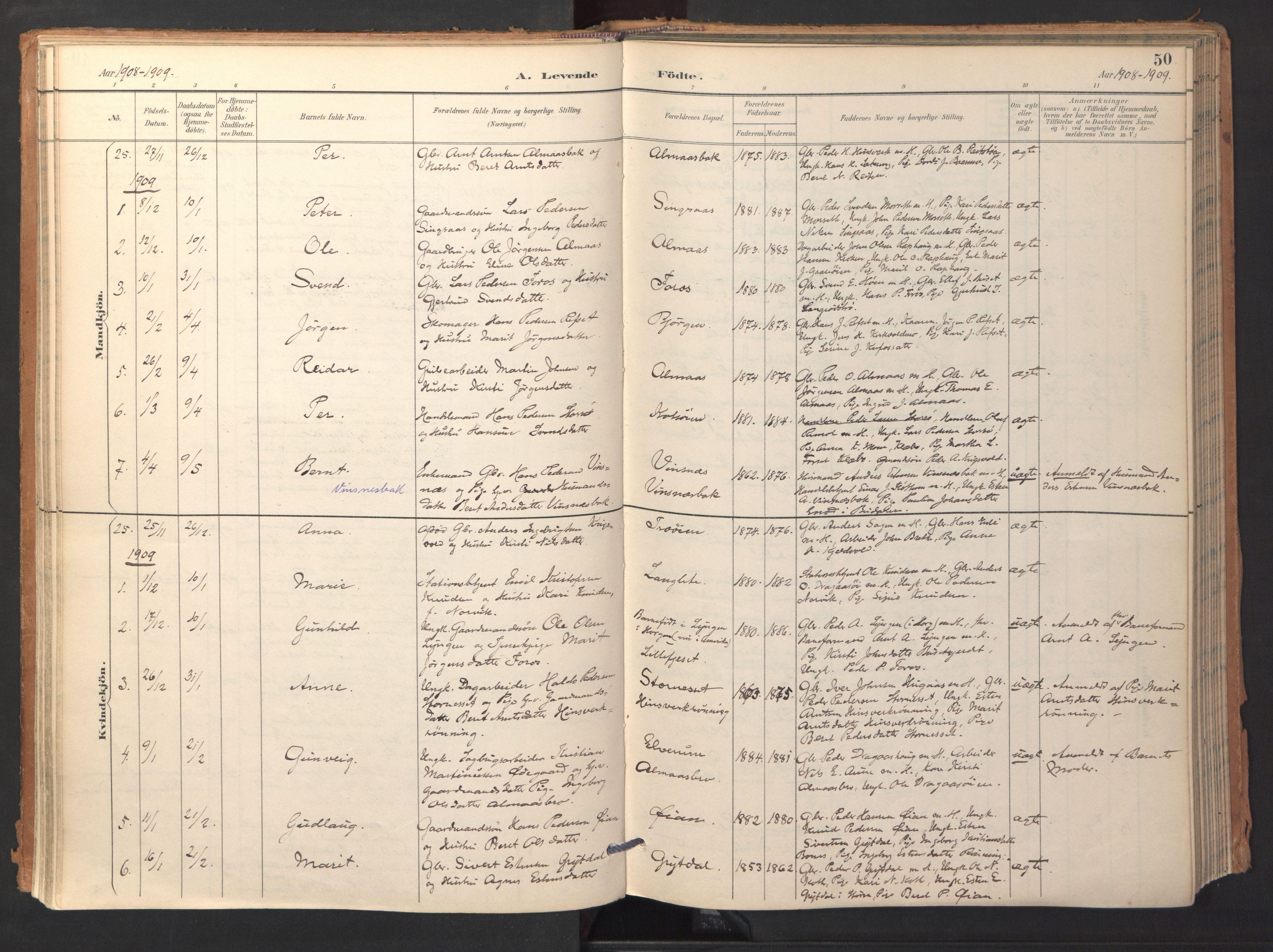 SAT, Ministerialprotokoller, klokkerbøker og fødselsregistre - Sør-Trøndelag, 688/L1025: Ministerialbok nr. 688A02, 1891-1909, s. 50