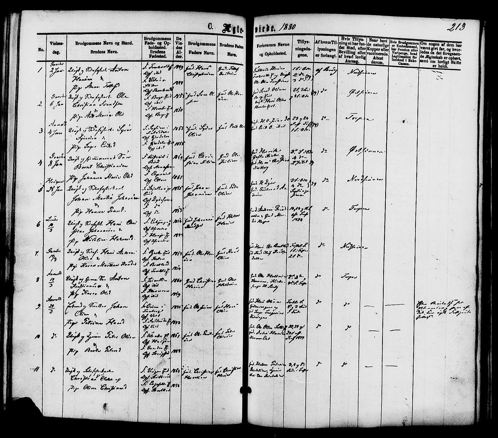 SAH, Nordre Land prestekontor, Ministerialbok nr. 2, 1872-1881, s. 213