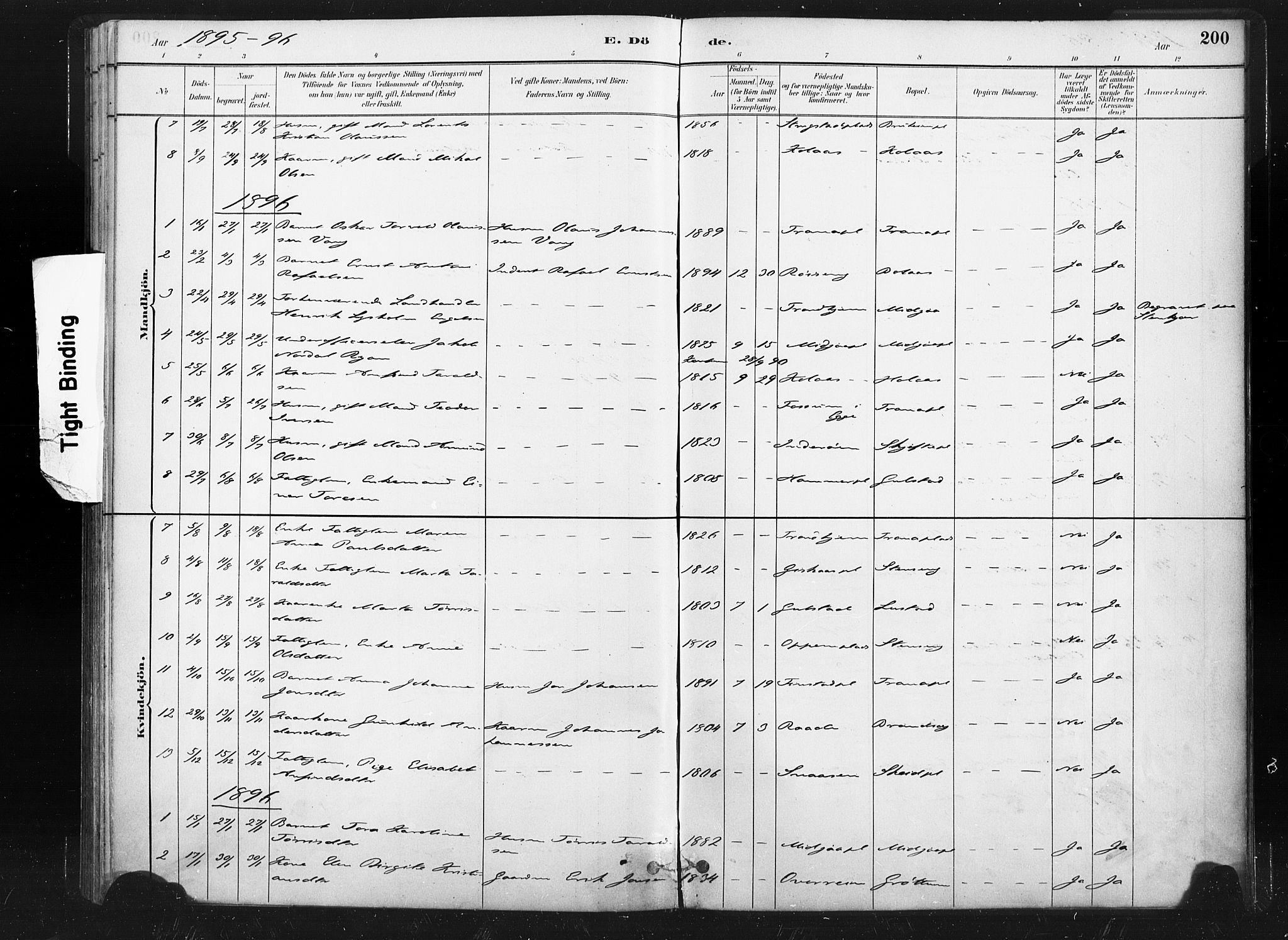 SAT, Ministerialprotokoller, klokkerbøker og fødselsregistre - Nord-Trøndelag, 736/L0361: Ministerialbok nr. 736A01, 1884-1906, s. 200