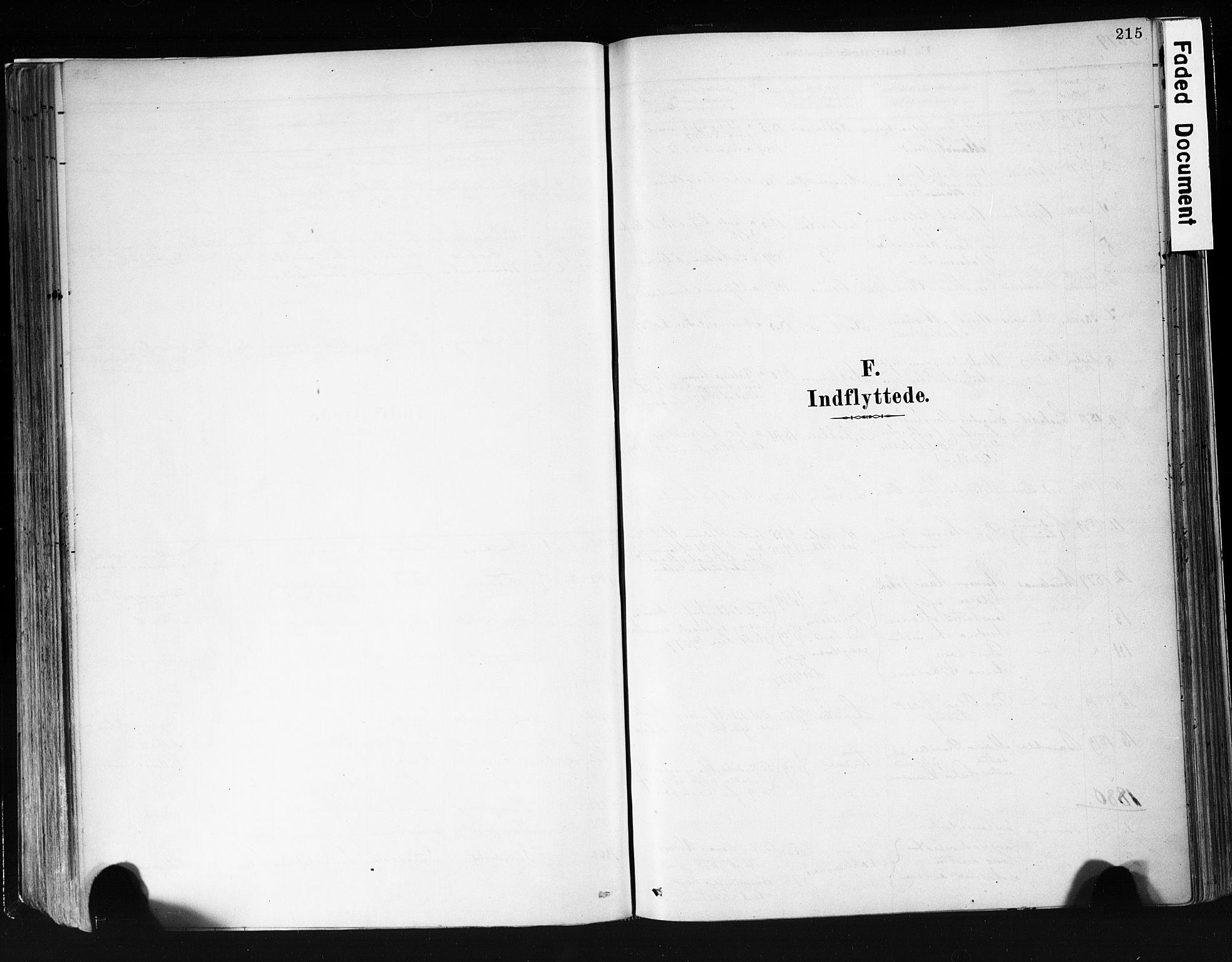 SAKO, Eidanger kirkebøker, F/Fa/L0012: Ministerialbok nr. 12, 1879-1900, s. 215