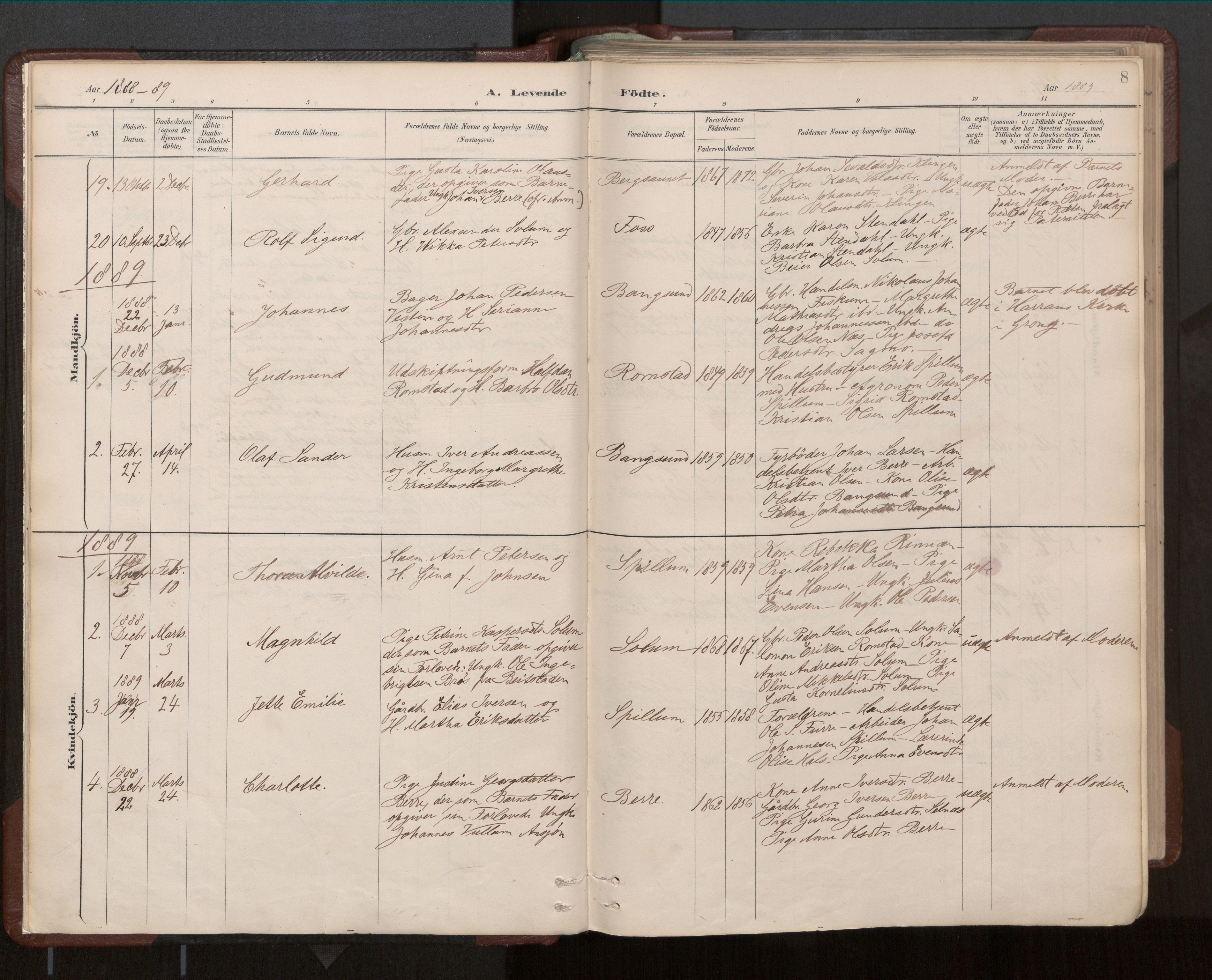SAT, Ministerialprotokoller, klokkerbøker og fødselsregistre - Nord-Trøndelag, 770/L0589: Ministerialbok nr. 770A03, 1887-1929, s. 8