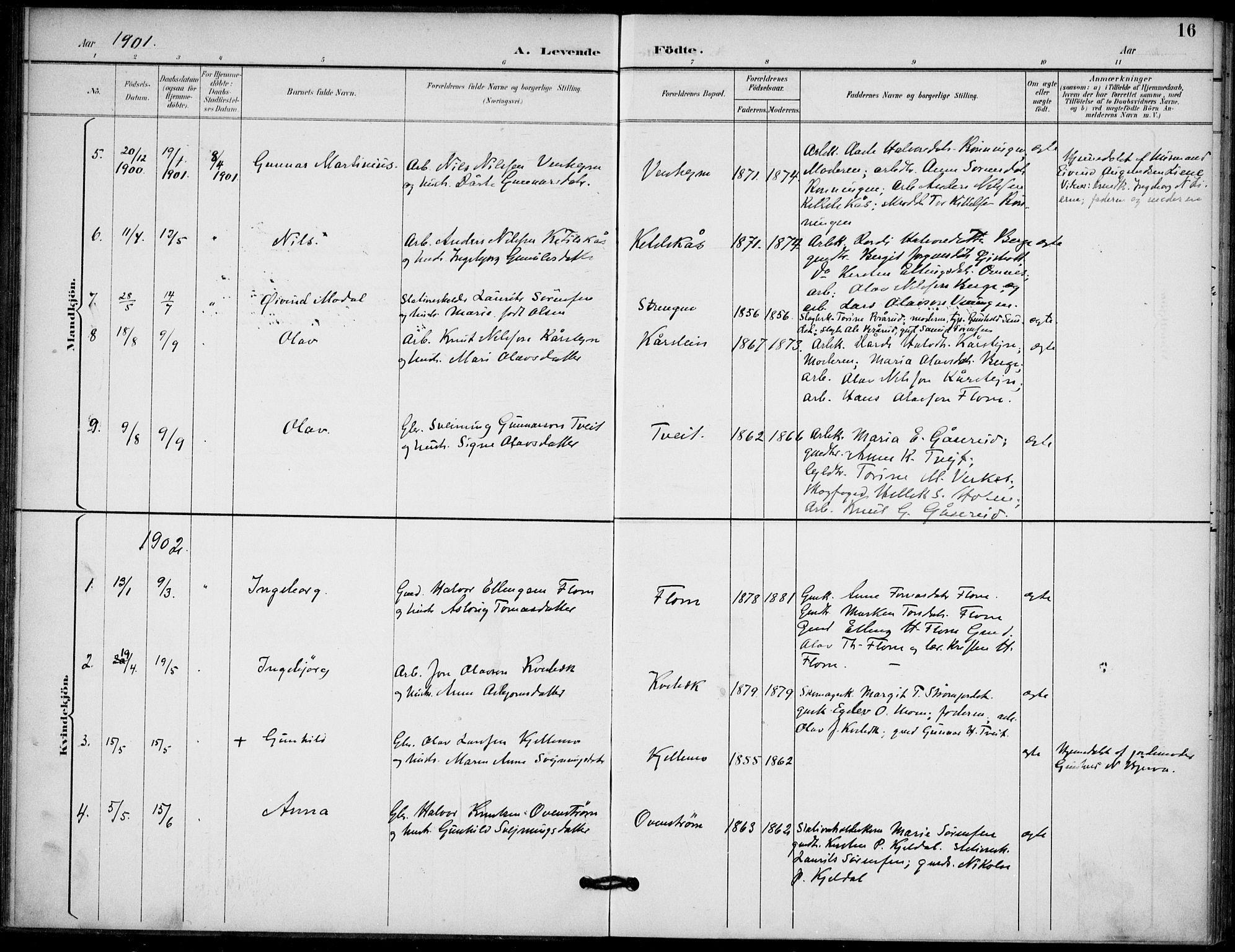 SAKO, Lunde kirkebøker, F/Fb/L0004: Ministerialbok nr. II 4, 1892-1907, s. 16