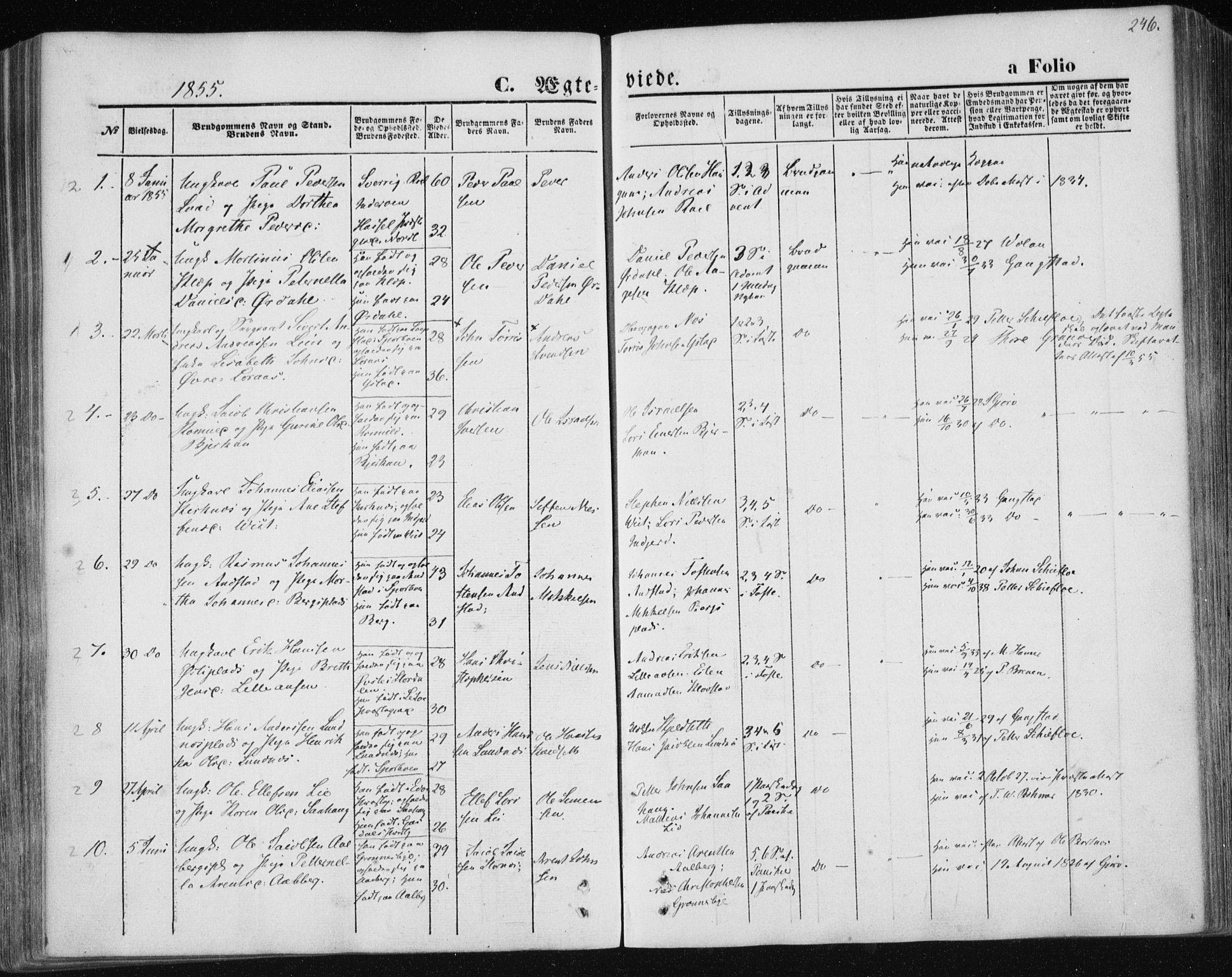 SAT, Ministerialprotokoller, klokkerbøker og fødselsregistre - Nord-Trøndelag, 730/L0283: Ministerialbok nr. 730A08, 1855-1865, s. 246