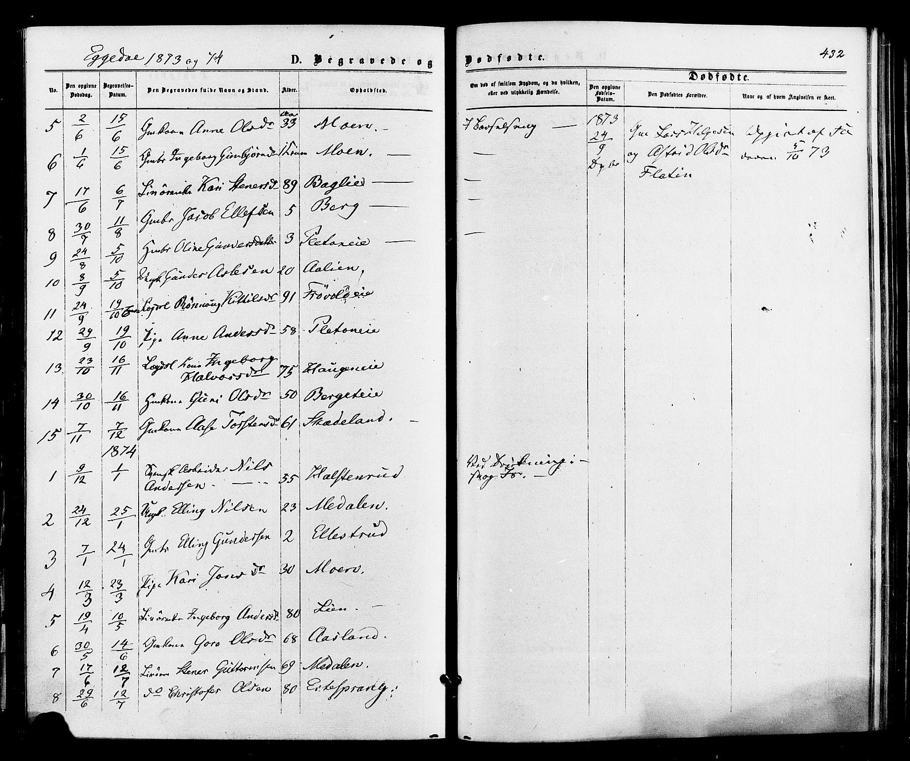 SAKO, Sigdal kirkebøker, F/Fa/L0010: Ministerialbok nr. I 10 /3, 1872-1878, s. 432
