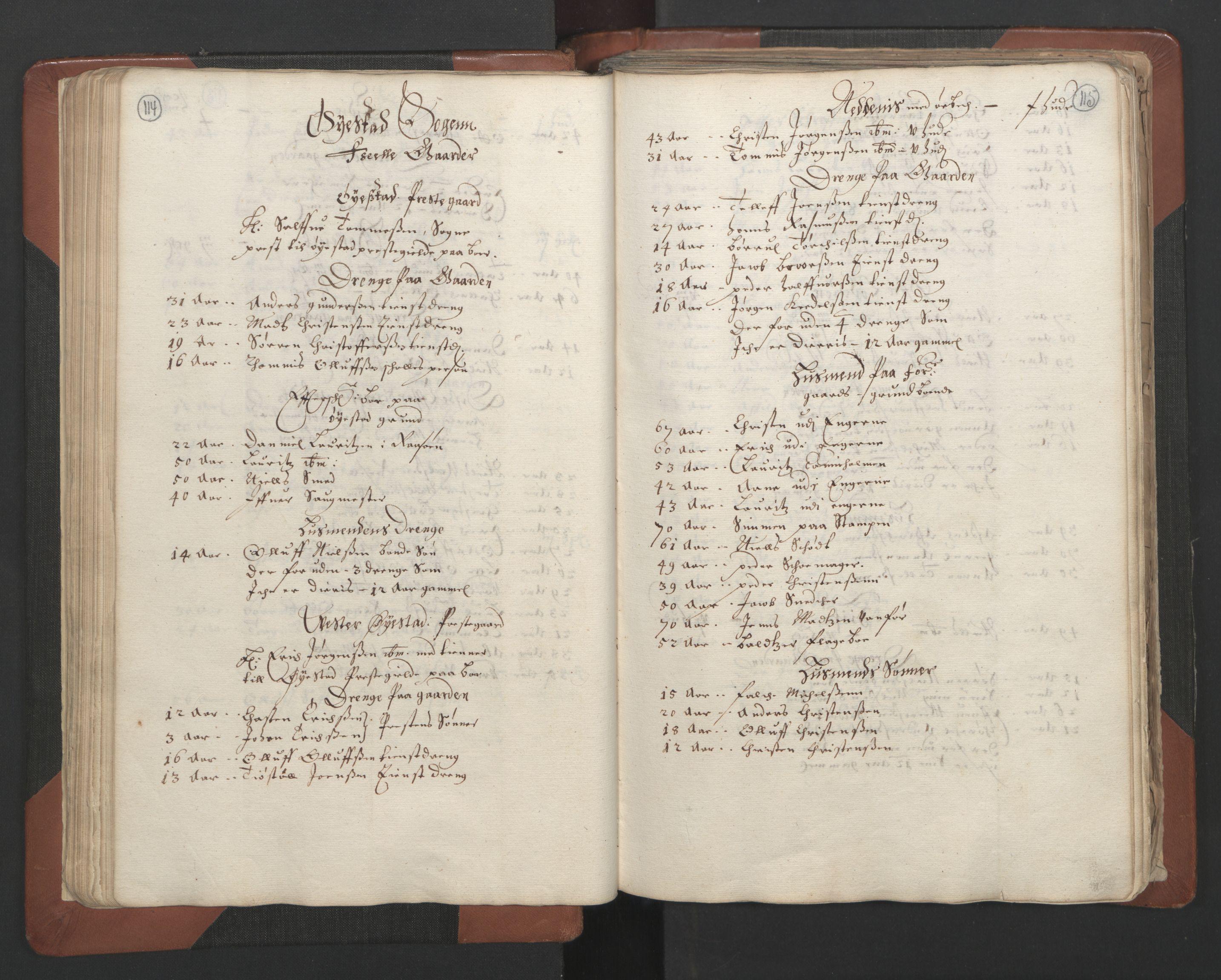 RA, Fogdenes og sorenskrivernes manntall 1664-1666, nr. 7: Nedenes fogderi, 1664-1666, s. 114-115