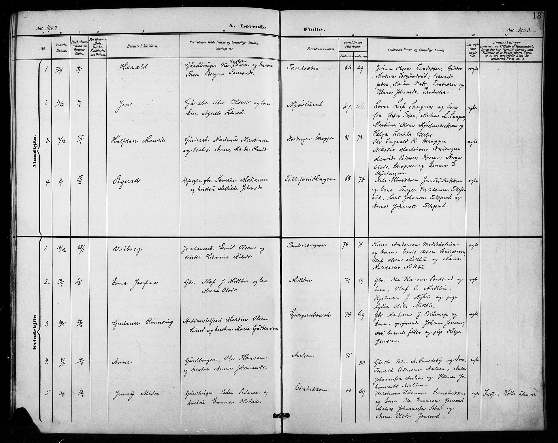 SAH, Vestre Toten prestekontor, H/Ha/Hab/L0016: Klokkerbok nr. 16, 1901-1915, s. 13