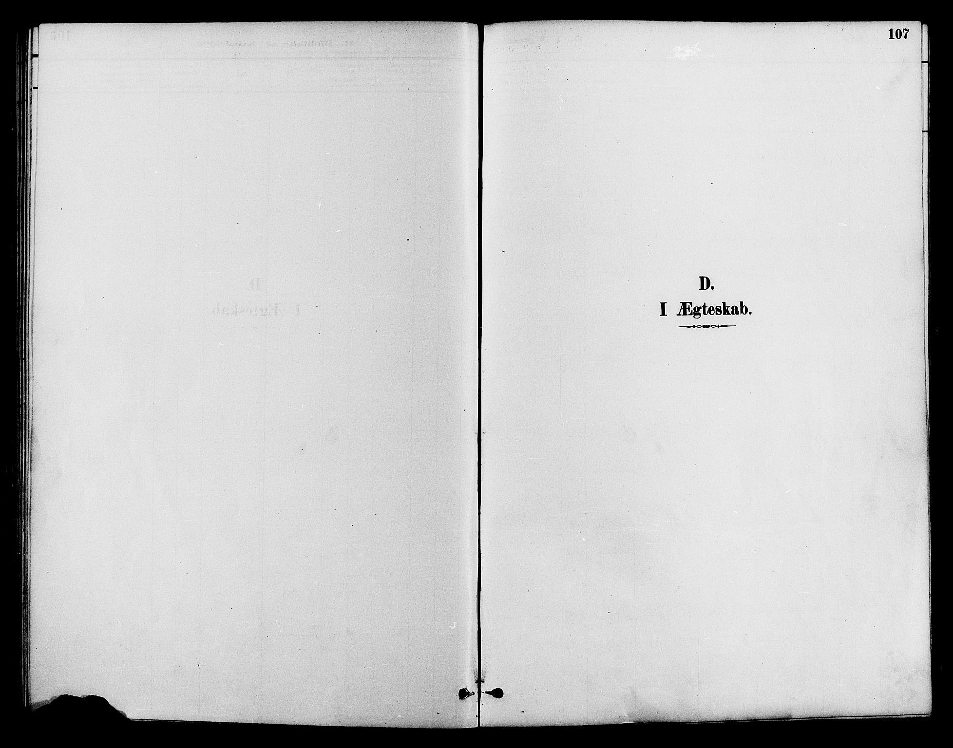 SAH, Lom prestekontor, K/L0008: Ministerialbok nr. 8, 1885-1898, s. 107