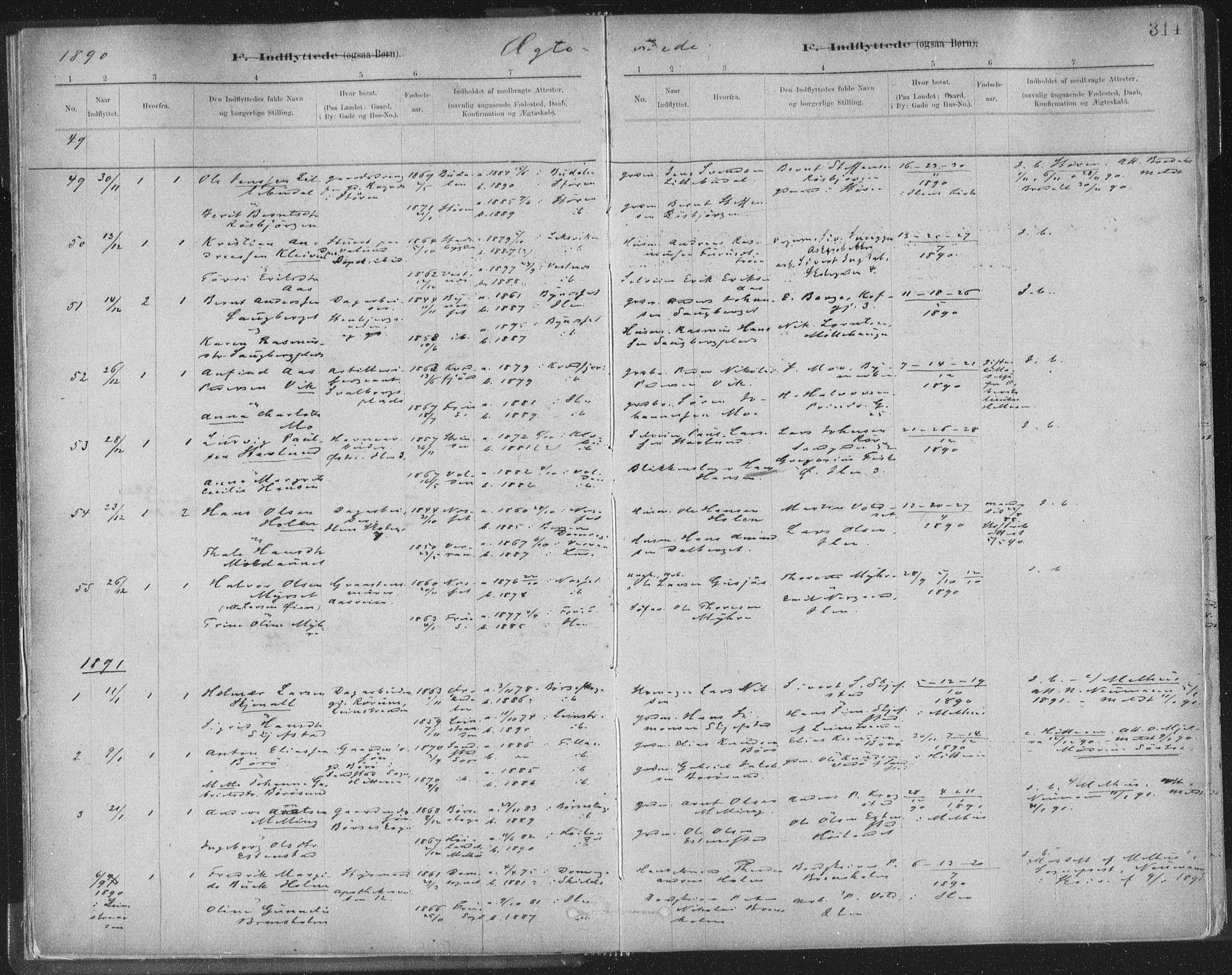 SAT, Ministerialprotokoller, klokkerbøker og fødselsregistre - Sør-Trøndelag, 603/L0163: Ministerialbok nr. 603A02, 1879-1895, s. 314
