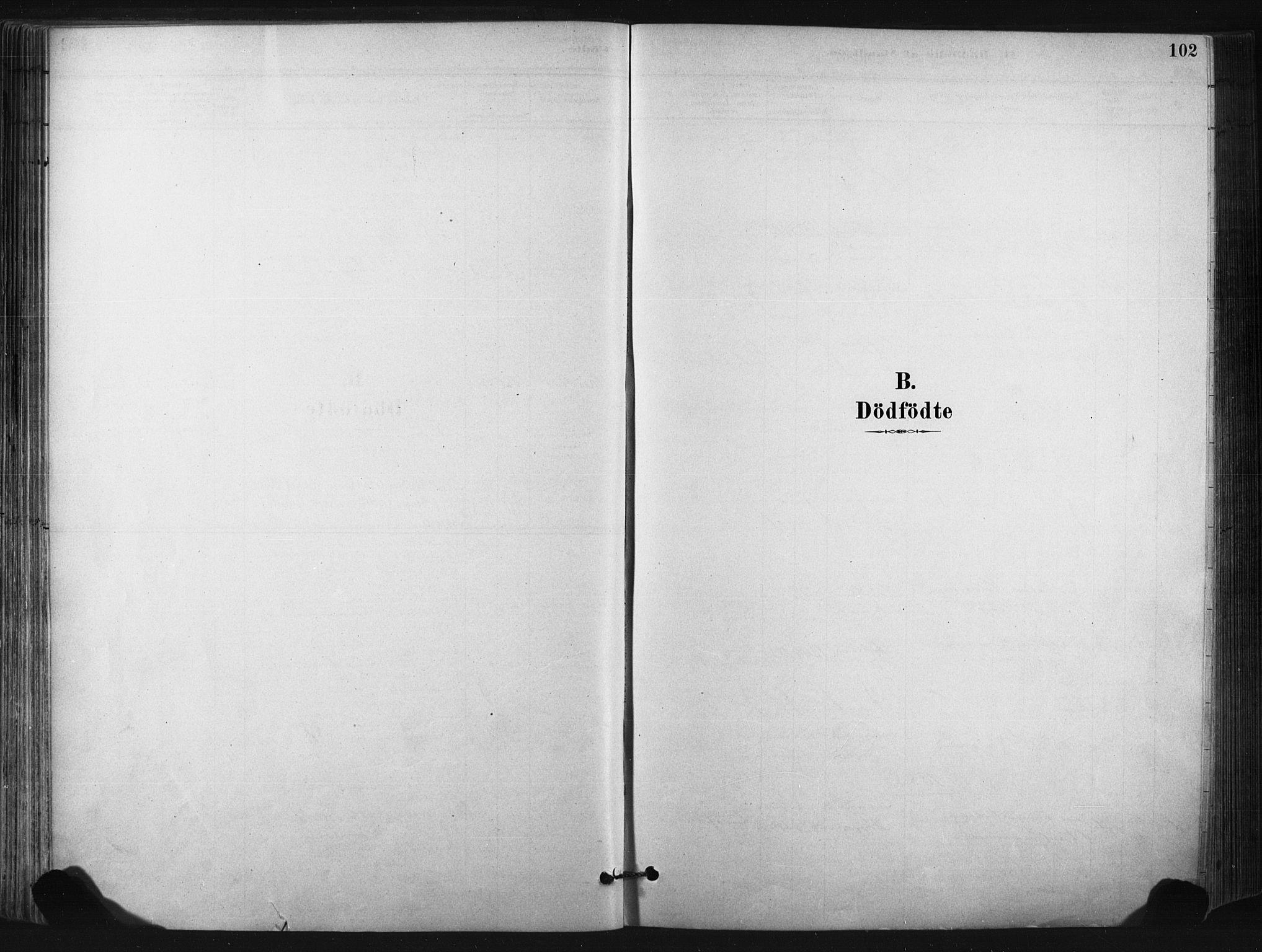 SAKO, Bø kirkebøker, F/Fa/L0010: Ministerialbok nr. 10, 1880-1892, s. 102
