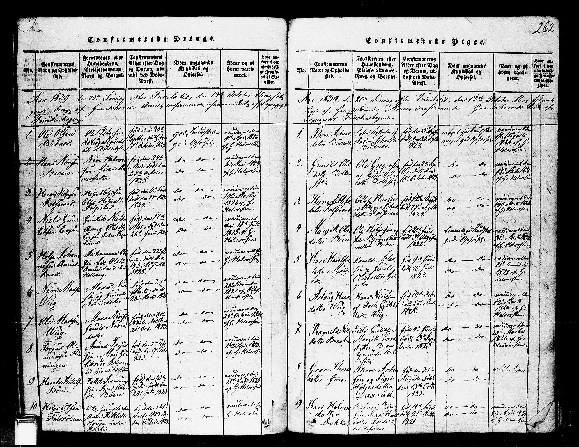 SAKO, Gransherad kirkebøker, F/Fa/L0001: Ministerialbok nr. I 1, 1815-1843, s. 262