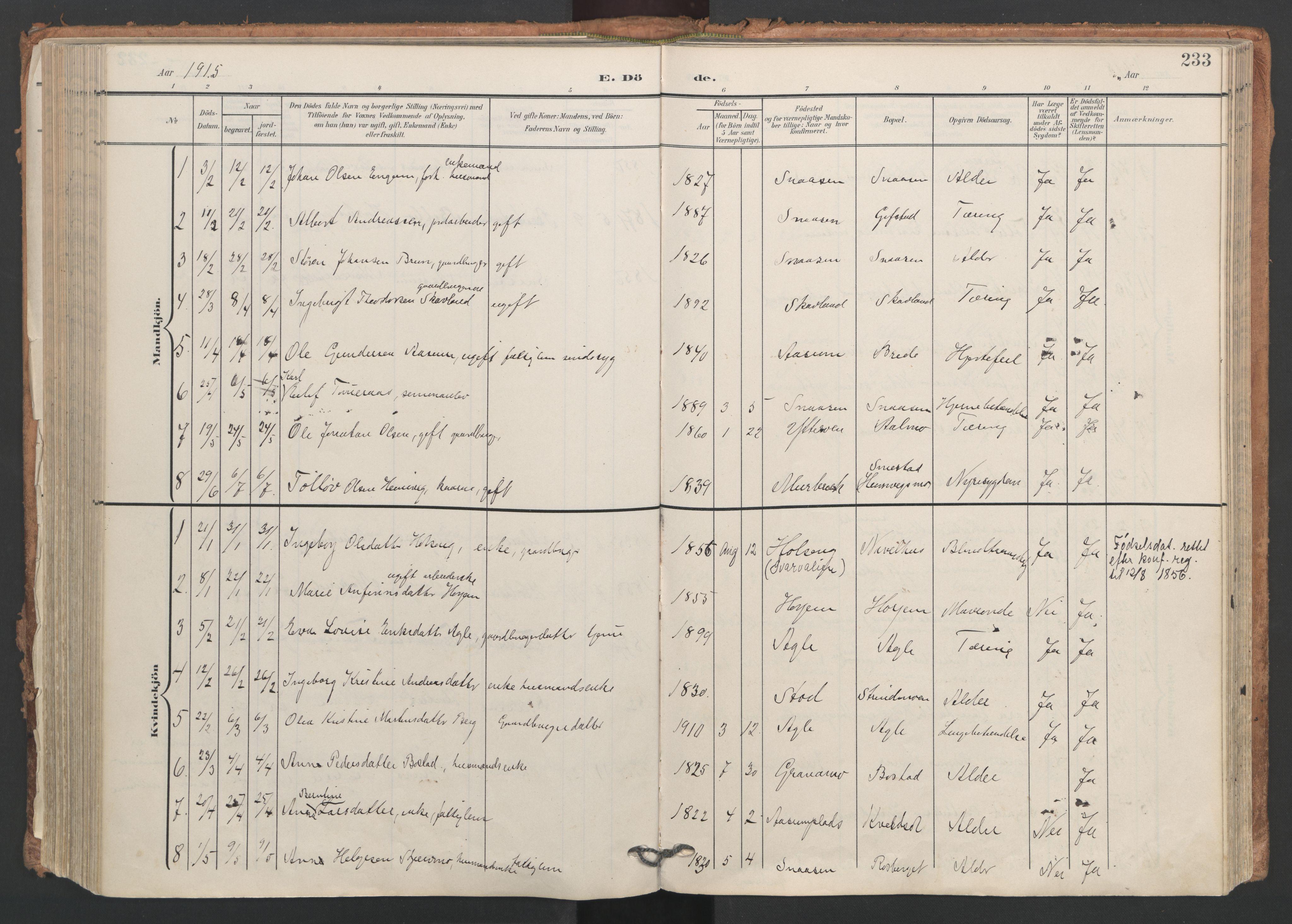 SAT, Ministerialprotokoller, klokkerbøker og fødselsregistre - Nord-Trøndelag, 749/L0477: Ministerialbok nr. 749A11, 1902-1927, s. 233