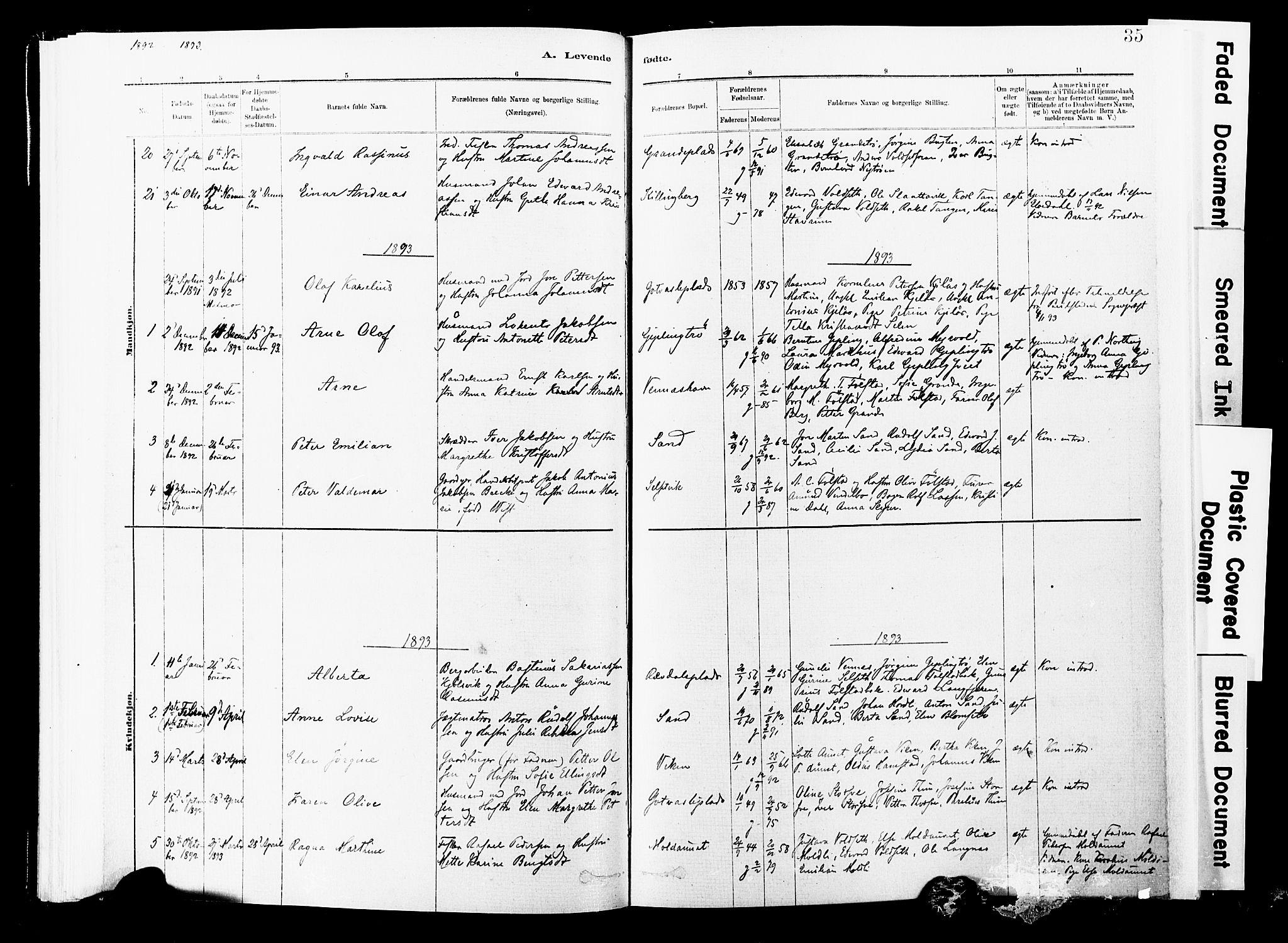 SAT, Ministerialprotokoller, klokkerbøker og fødselsregistre - Nord-Trøndelag, 744/L0420: Ministerialbok nr. 744A04, 1882-1904, s. 35