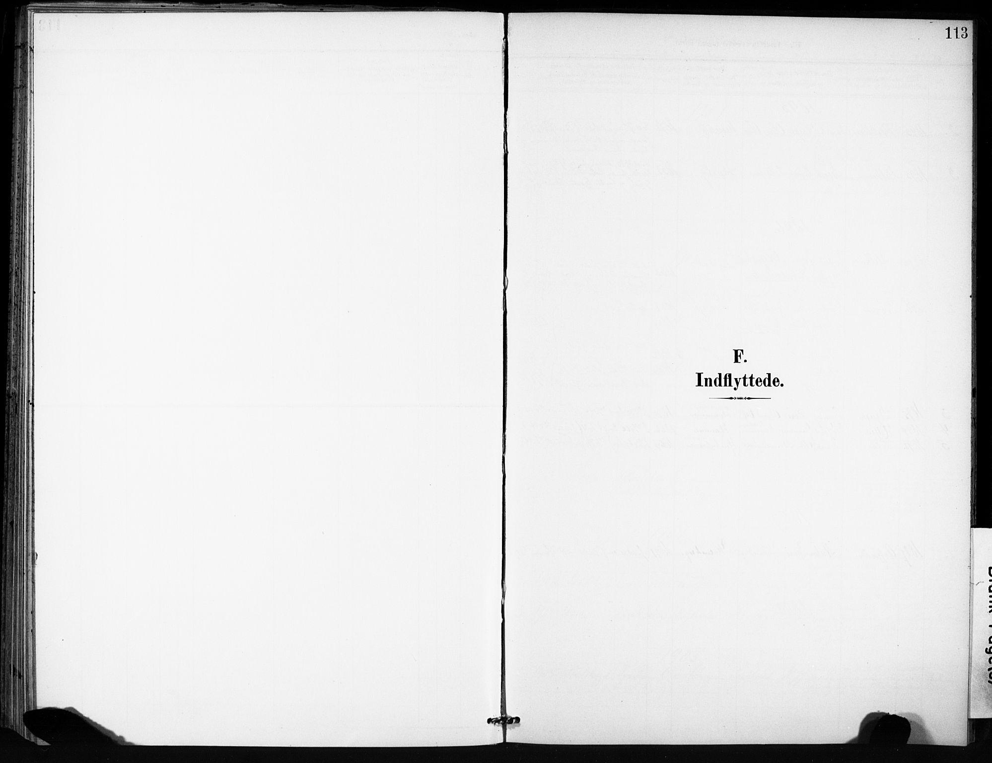 SAT, Ministerialprotokoller, klokkerbøker og fødselsregistre - Sør-Trøndelag, 666/L0787: Ministerialbok nr. 666A05, 1895-1908, s. 113