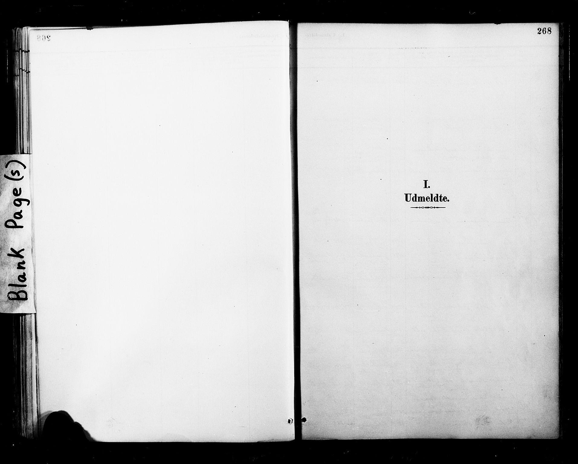 SAT, Ministerialprotokoller, klokkerbøker og fødselsregistre - Nordland, 827/L0401: Ministerialbok nr. 827A13, 1887-1905, s. 268