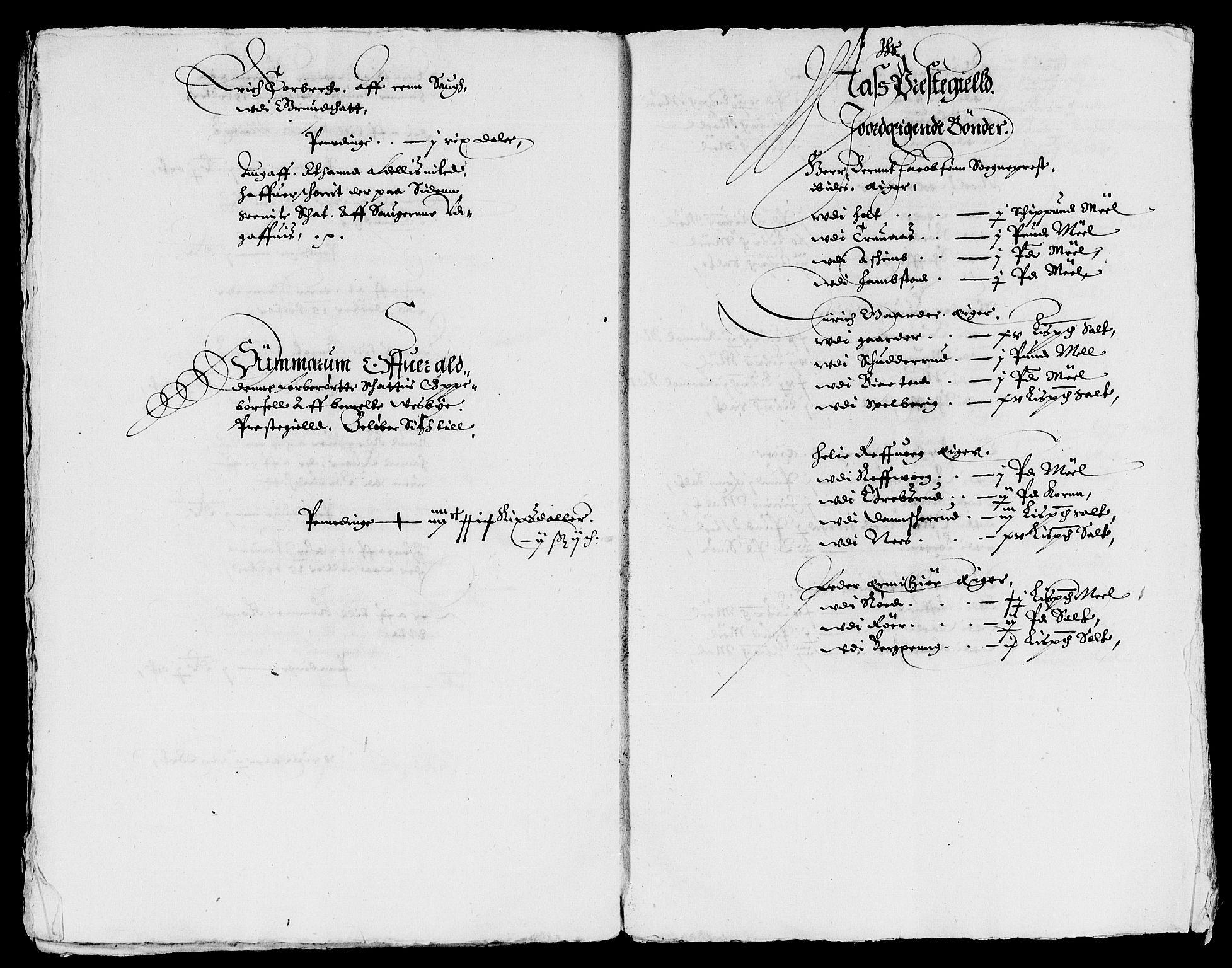 RA, Rentekammeret inntil 1814, Reviderte regnskaper, Lensregnskaper, R/Rb/Rba/L0096: Akershus len, 1629-1630