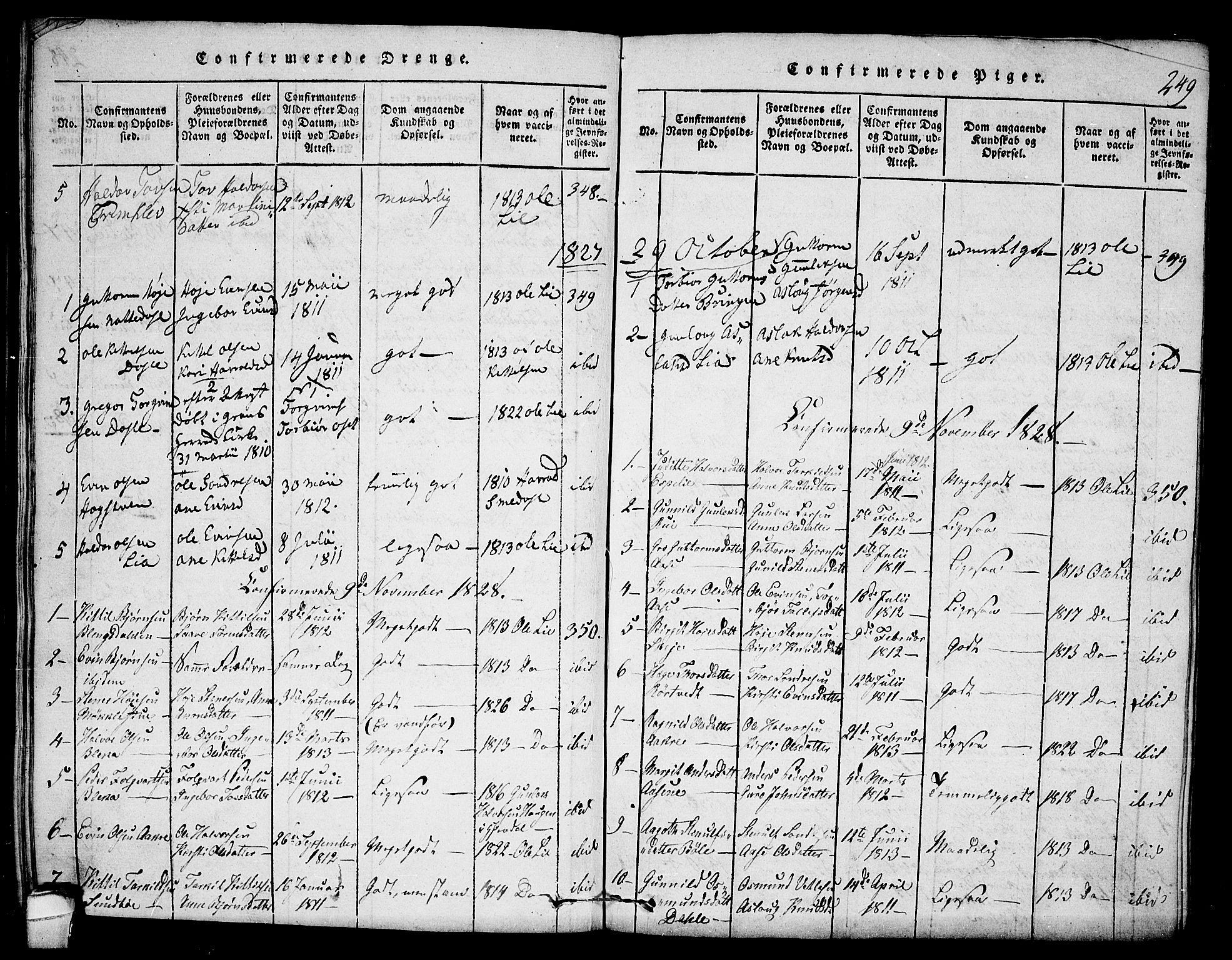SAKO, Seljord kirkebøker, F/Fb/L0001: Ministerialbok nr. II 1, 1815-1831, s. 249