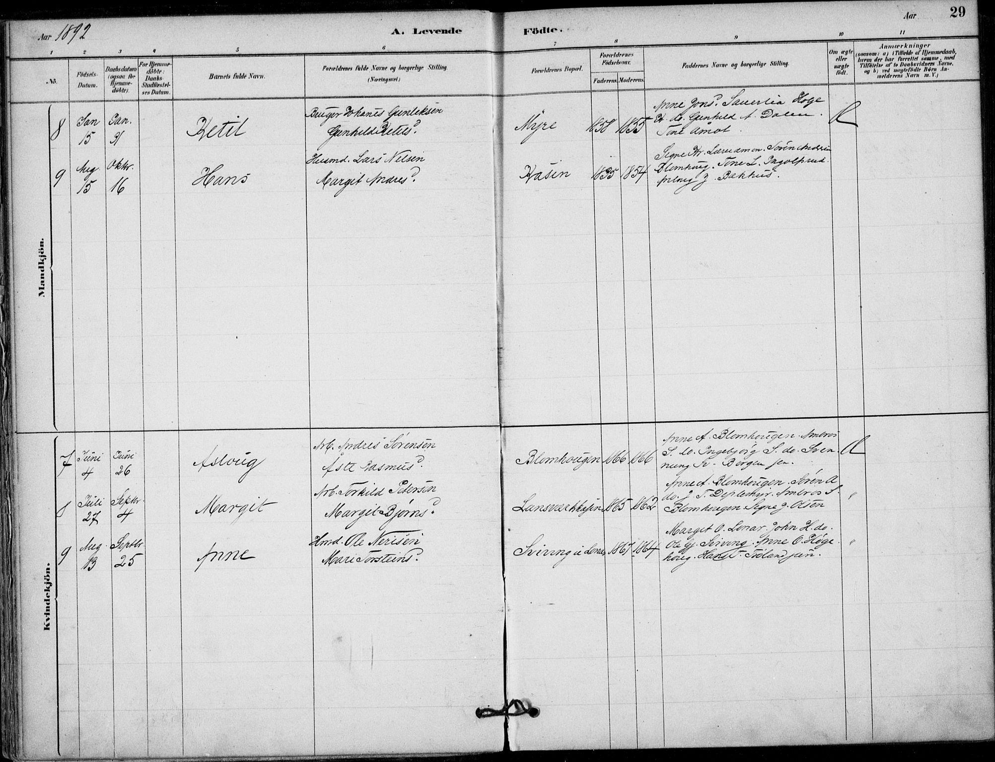 SAKO, Hjartdal kirkebøker, F/Fb/L0002: Ministerialbok nr. II 2, 1880-1932, s. 29