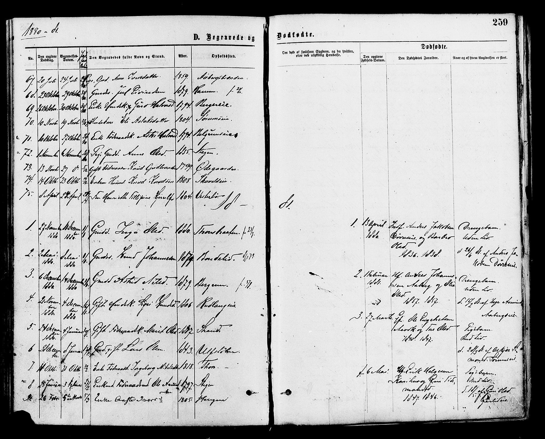 SAH, Nord-Aurdal prestekontor, Ministerialbok nr. 9, 1876-1882, s. 259
