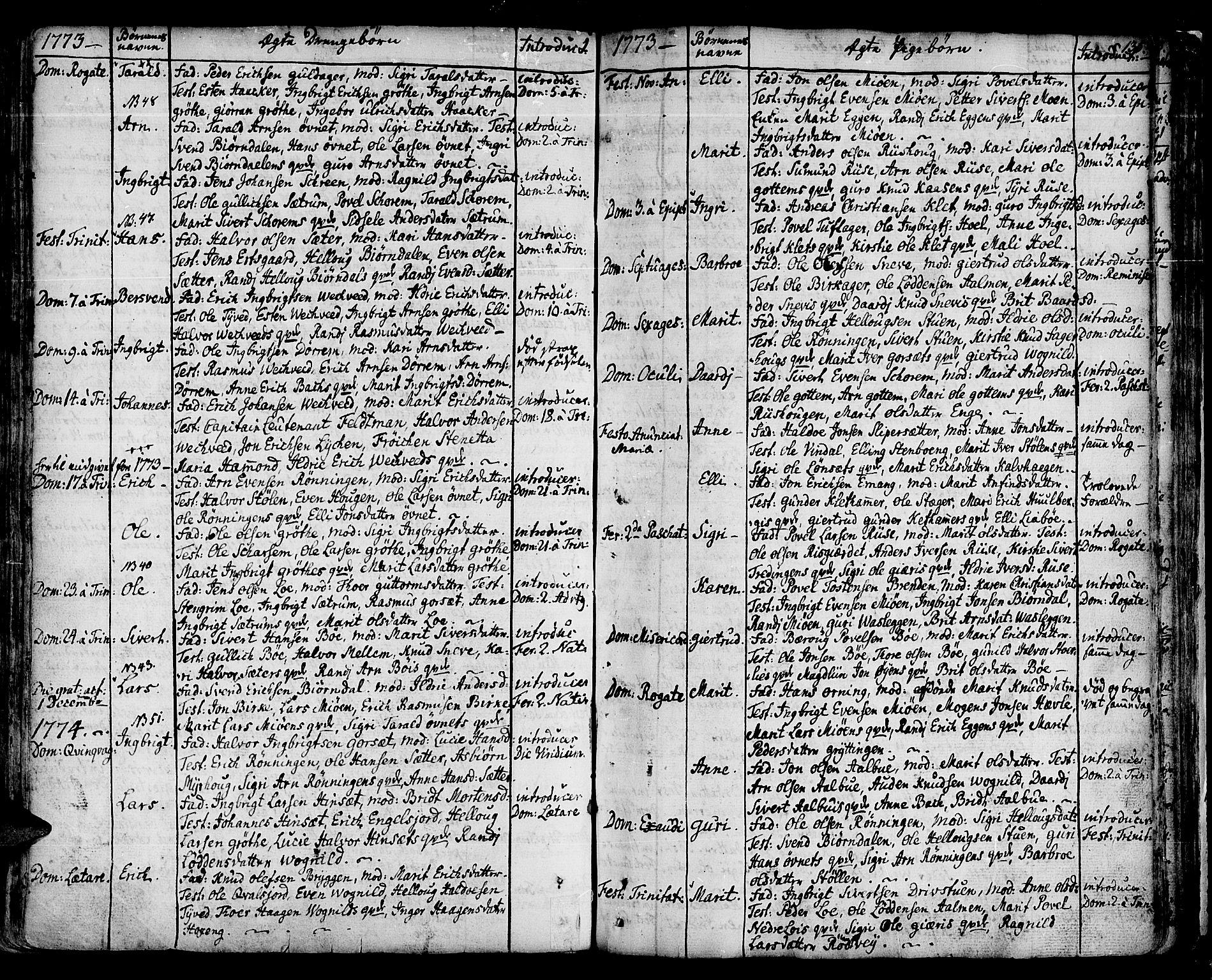 SAT, Ministerialprotokoller, klokkerbøker og fødselsregistre - Sør-Trøndelag, 678/L0891: Ministerialbok nr. 678A01, 1739-1780, s. 135