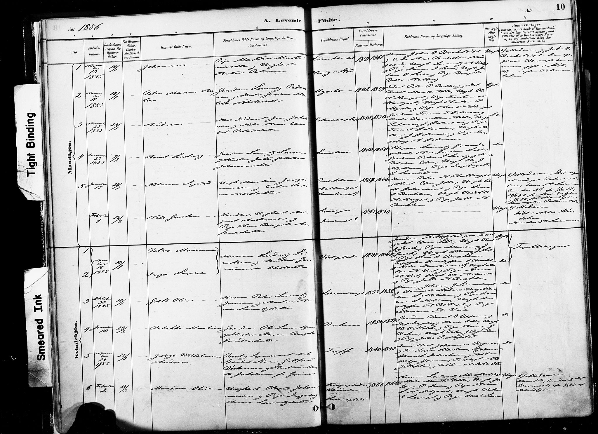 SAT, Ministerialprotokoller, klokkerbøker og fødselsregistre - Nord-Trøndelag, 735/L0351: Ministerialbok nr. 735A10, 1884-1908, s. 10