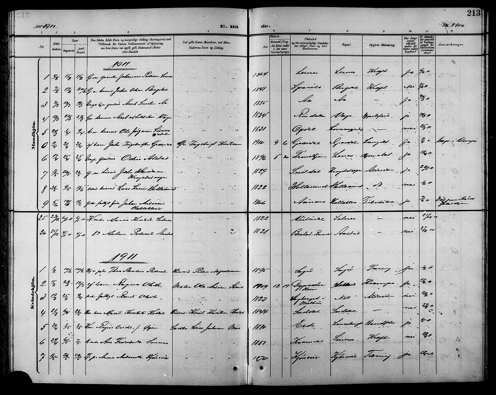 SAT, Ministerialprotokoller, klokkerbøker og fødselsregistre - Sør-Trøndelag, 630/L0505: Klokkerbok nr. 630C03, 1899-1914, s. 213