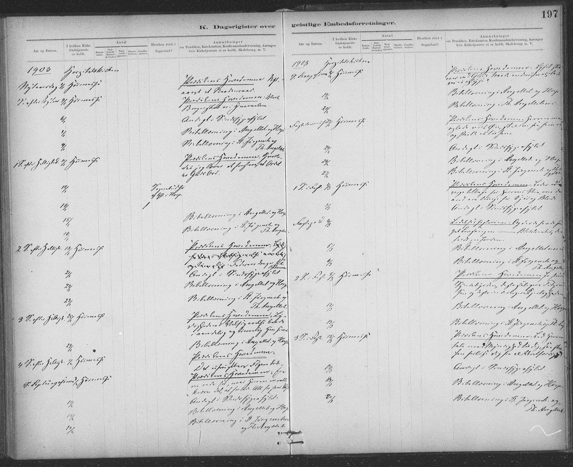 SAT, Ministerialprotokoller, klokkerbøker og fødselsregistre - Sør-Trøndelag, 623/L0470: Ministerialbok nr. 623A04, 1884-1938, s. 197