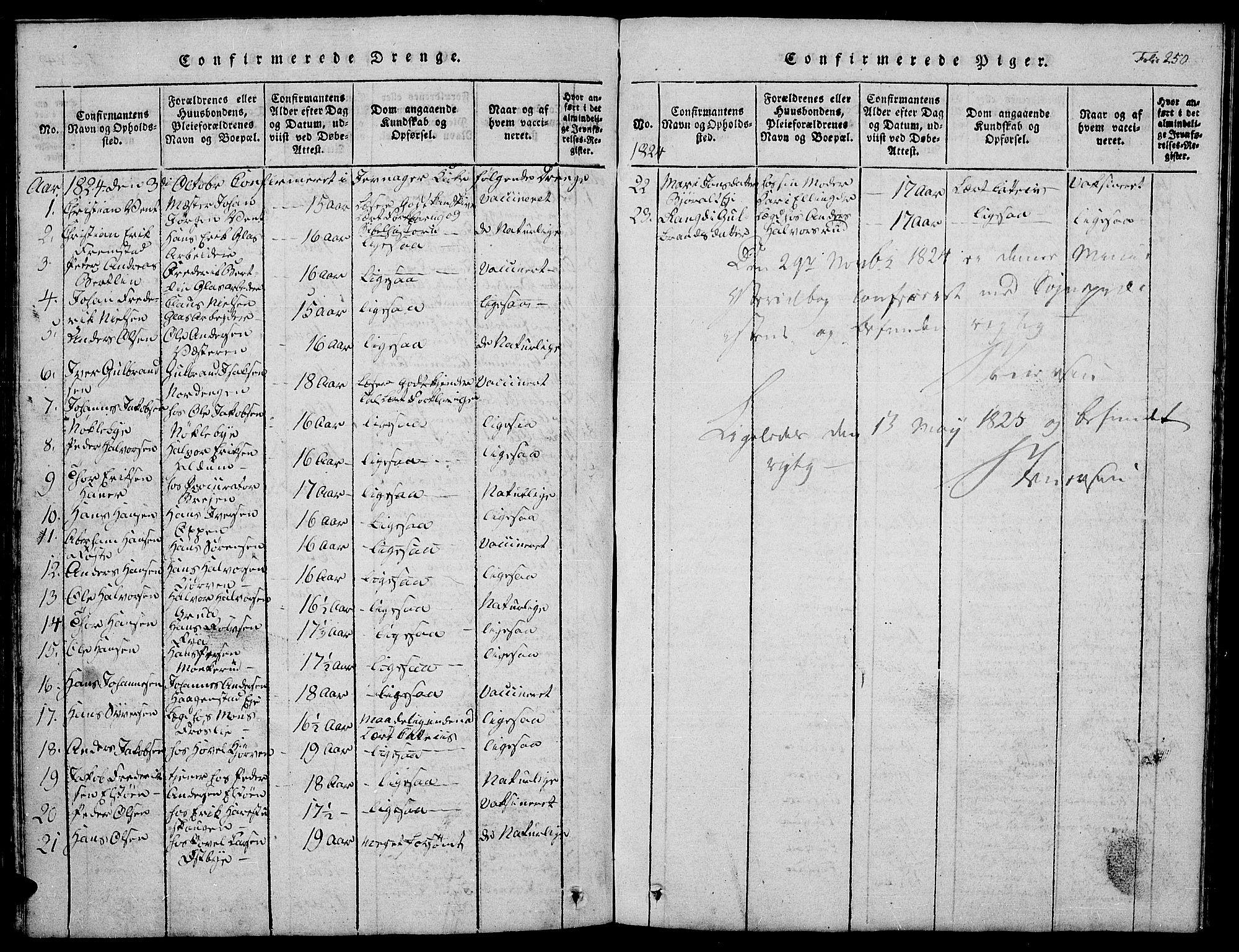SAH, Jevnaker prestekontor, Klokkerbok nr. 1, 1815-1837, s. 250